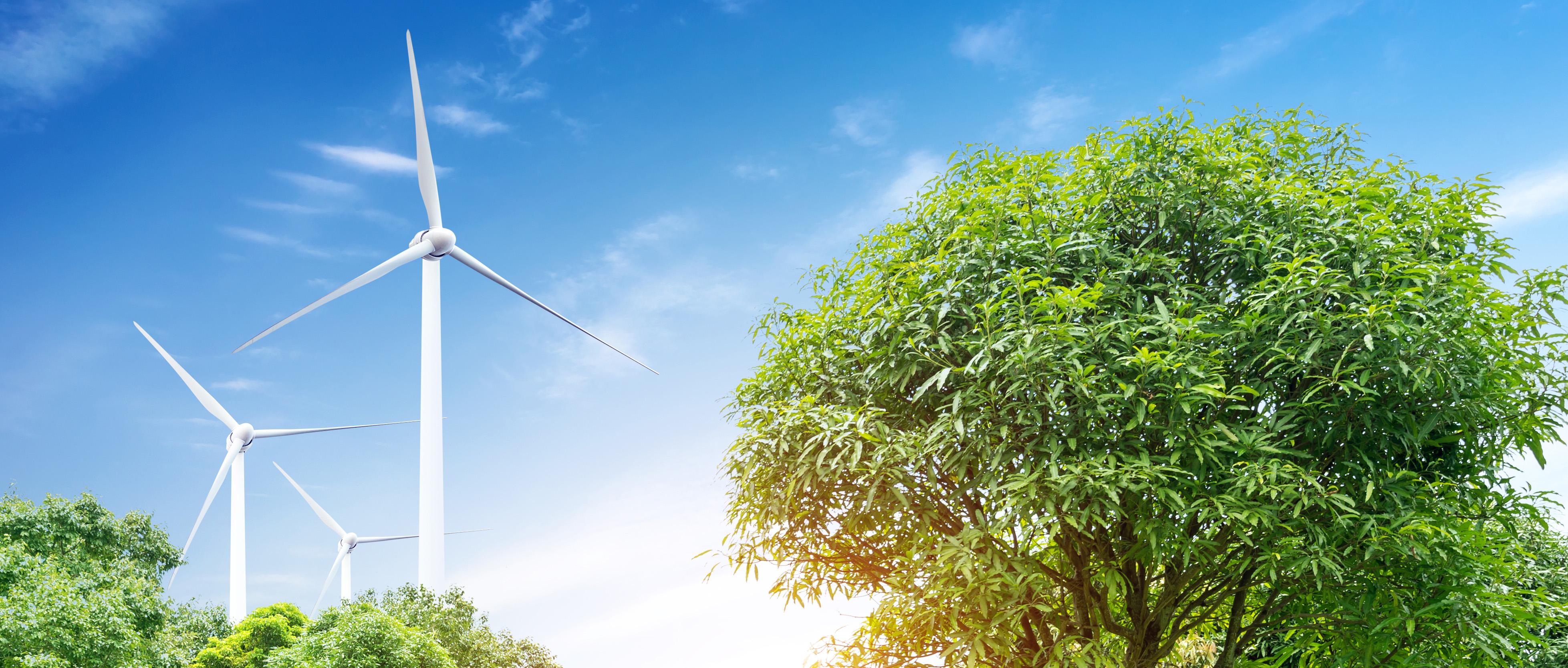 Green Energy Collaborative | CITIZEN POWER