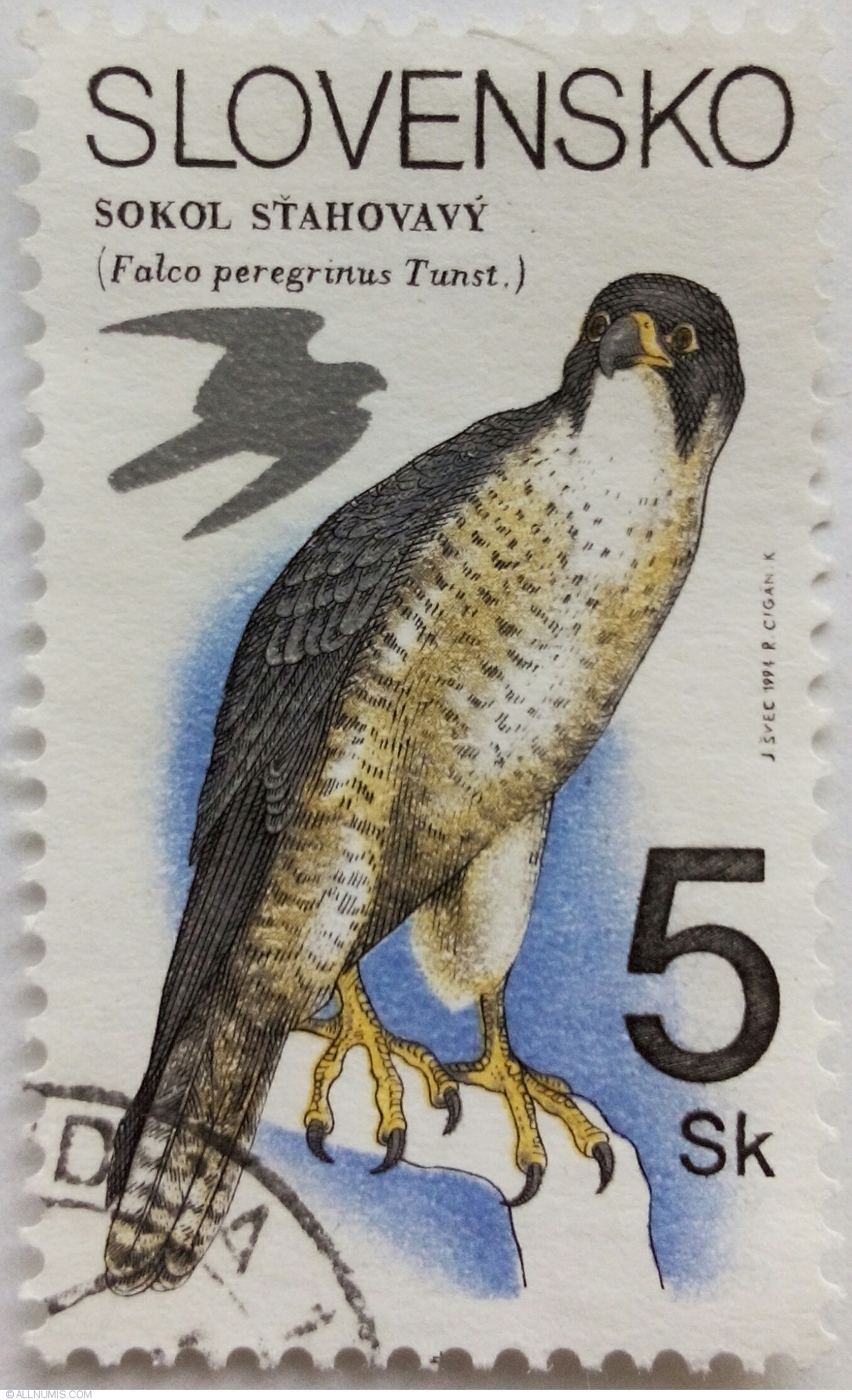 Green falcon stamp photo