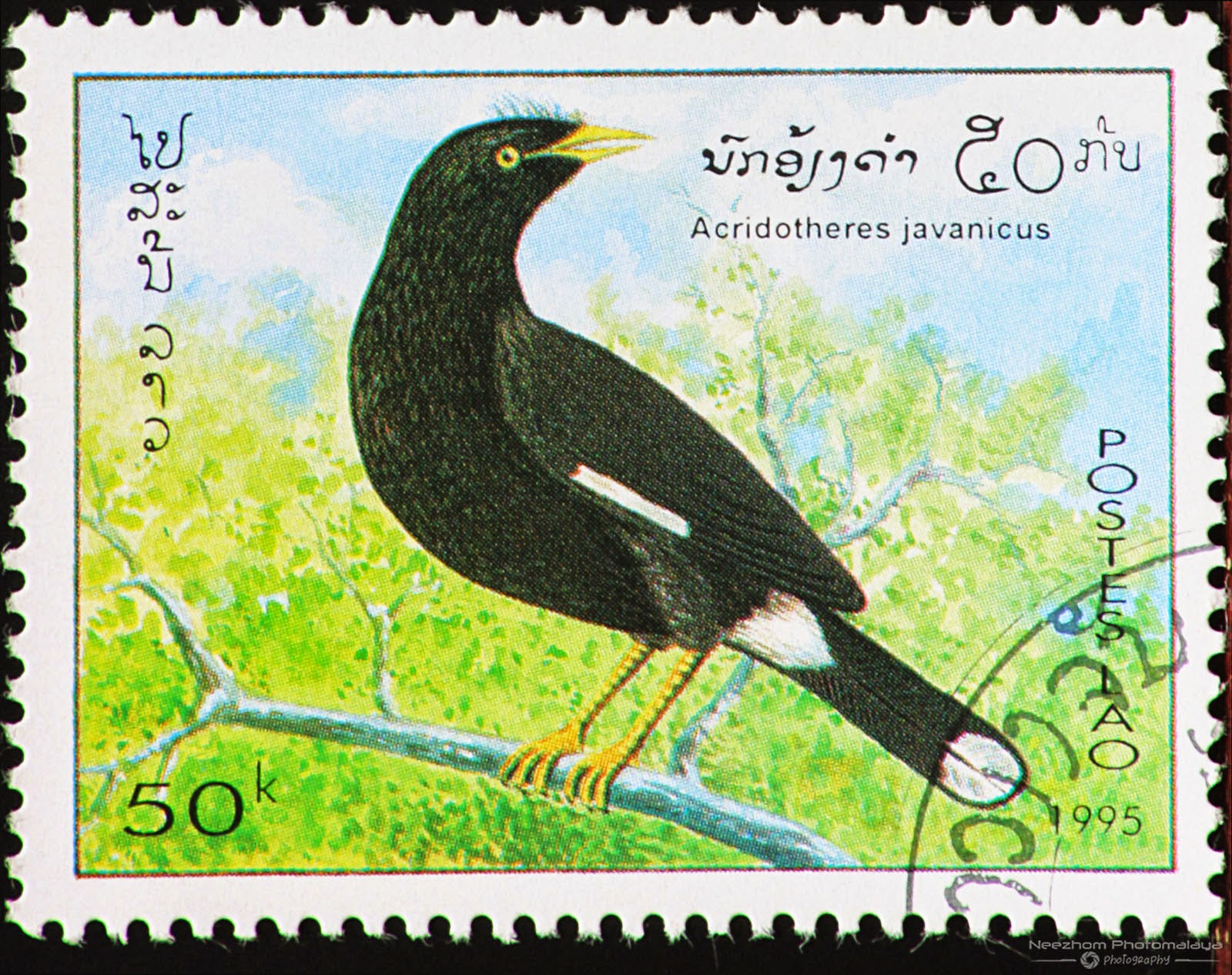 Laos 1995 Birds stamps | Stamps Gallery