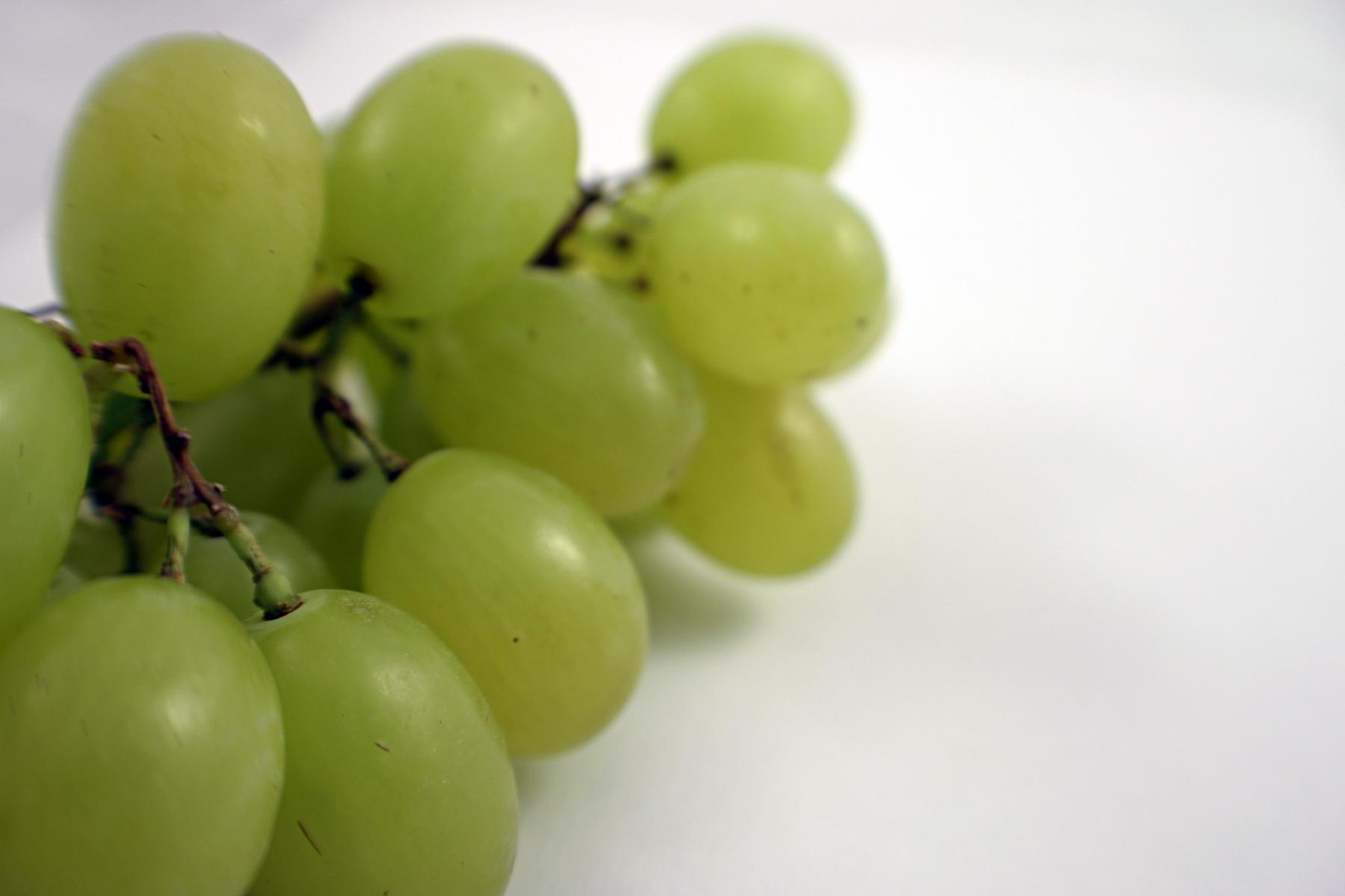 Green grapes photo