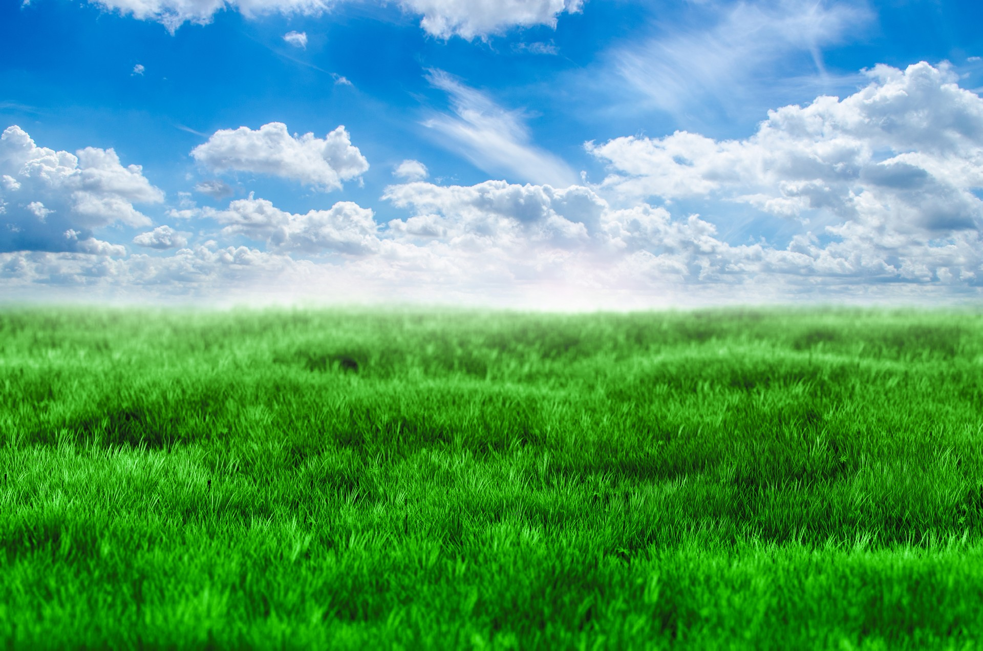 Green Grass And Blue Sky Free Stock Photo - Public Domain Pictures