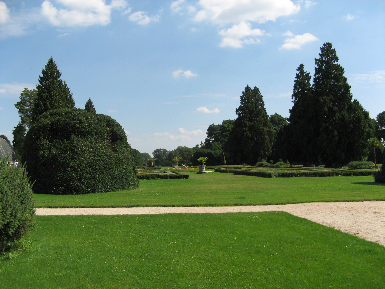 Free Stock Photo of Green Grass - Gardens