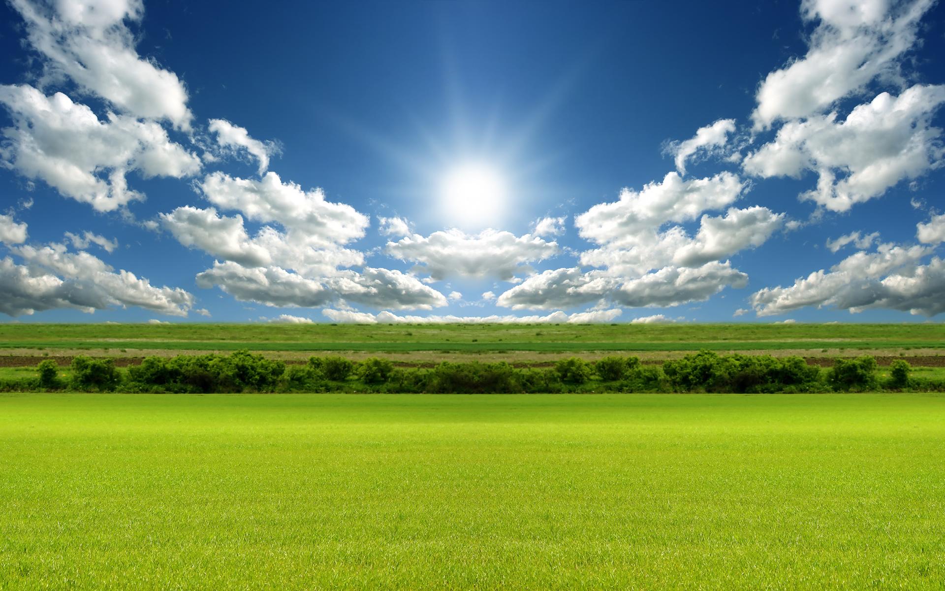 green-grass-field-wallpaper-3 – Farm Air Inc