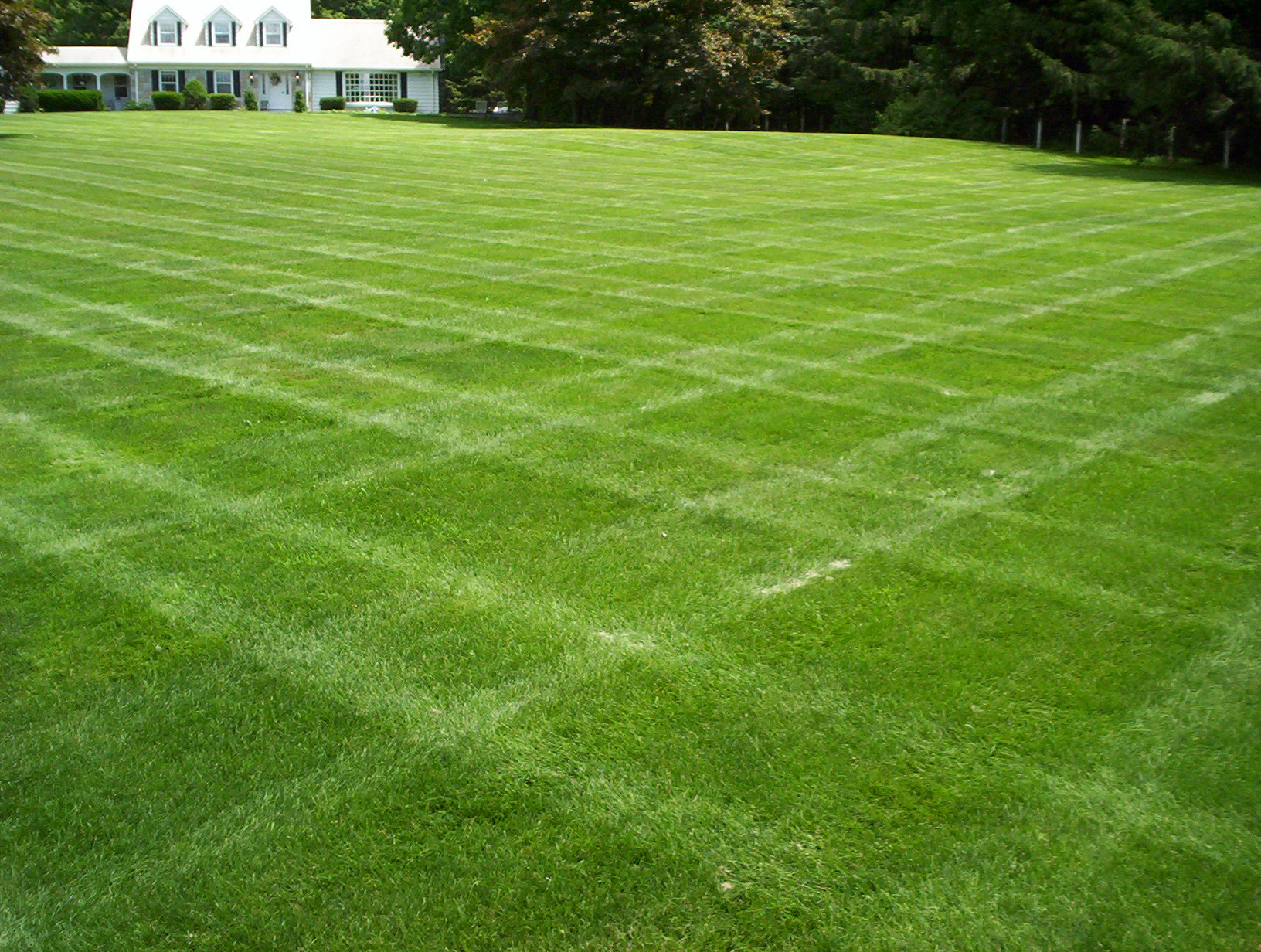 Kirkwood Lawn Cutting Services |