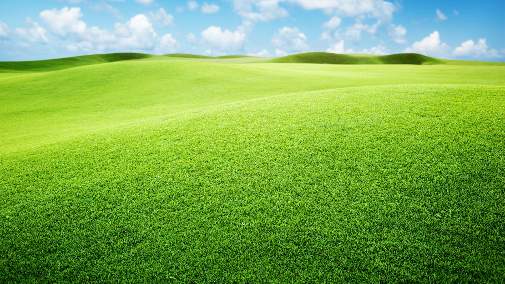 Green Landscape Wallpaper | HD Desktop Background