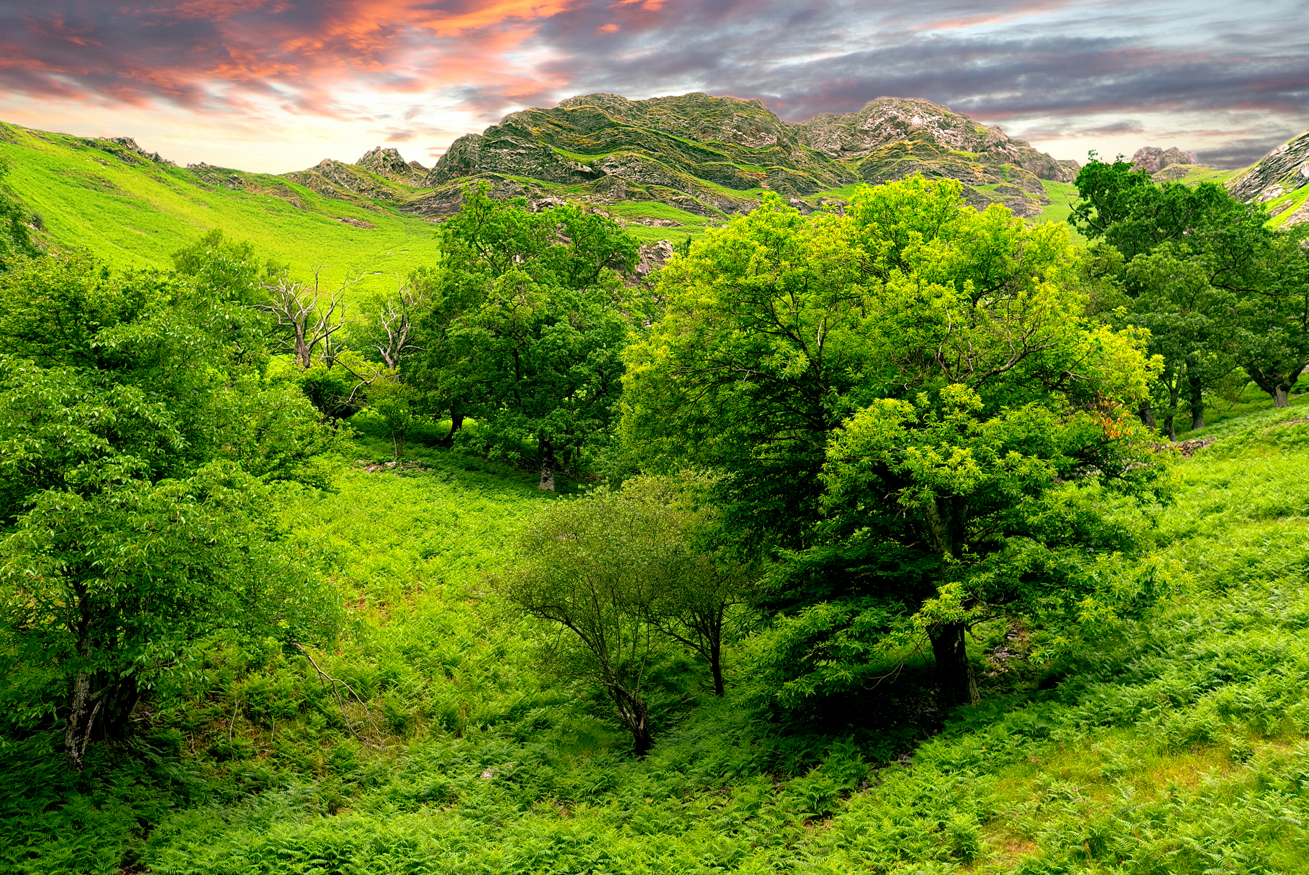 Green Landscape Wallpapers - 4272X2856 - 15145649 | Chainimage
