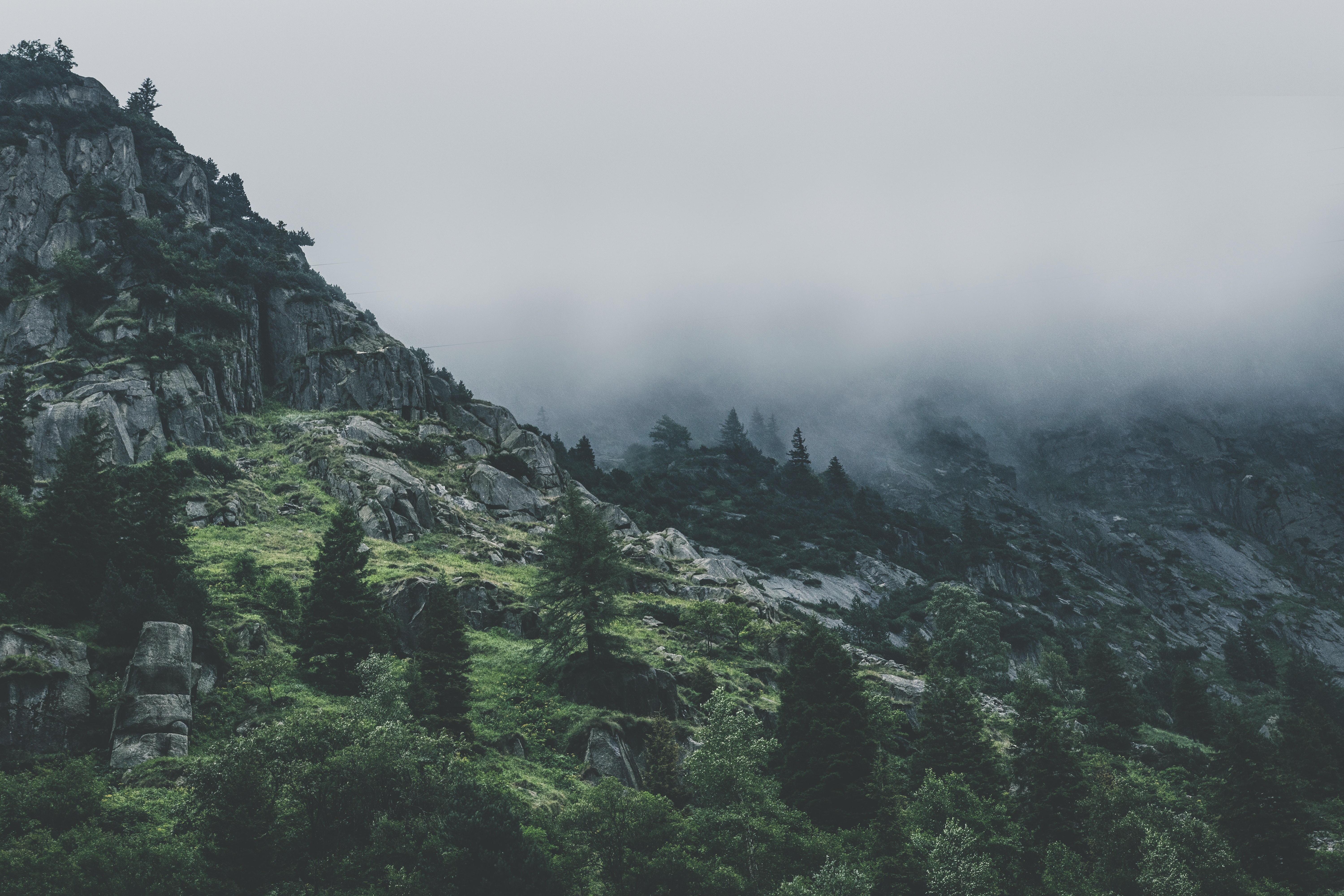 Green Leafed Trees during Fog Time, Alps, Mountain, Wilderness, Valley, HQ Photo