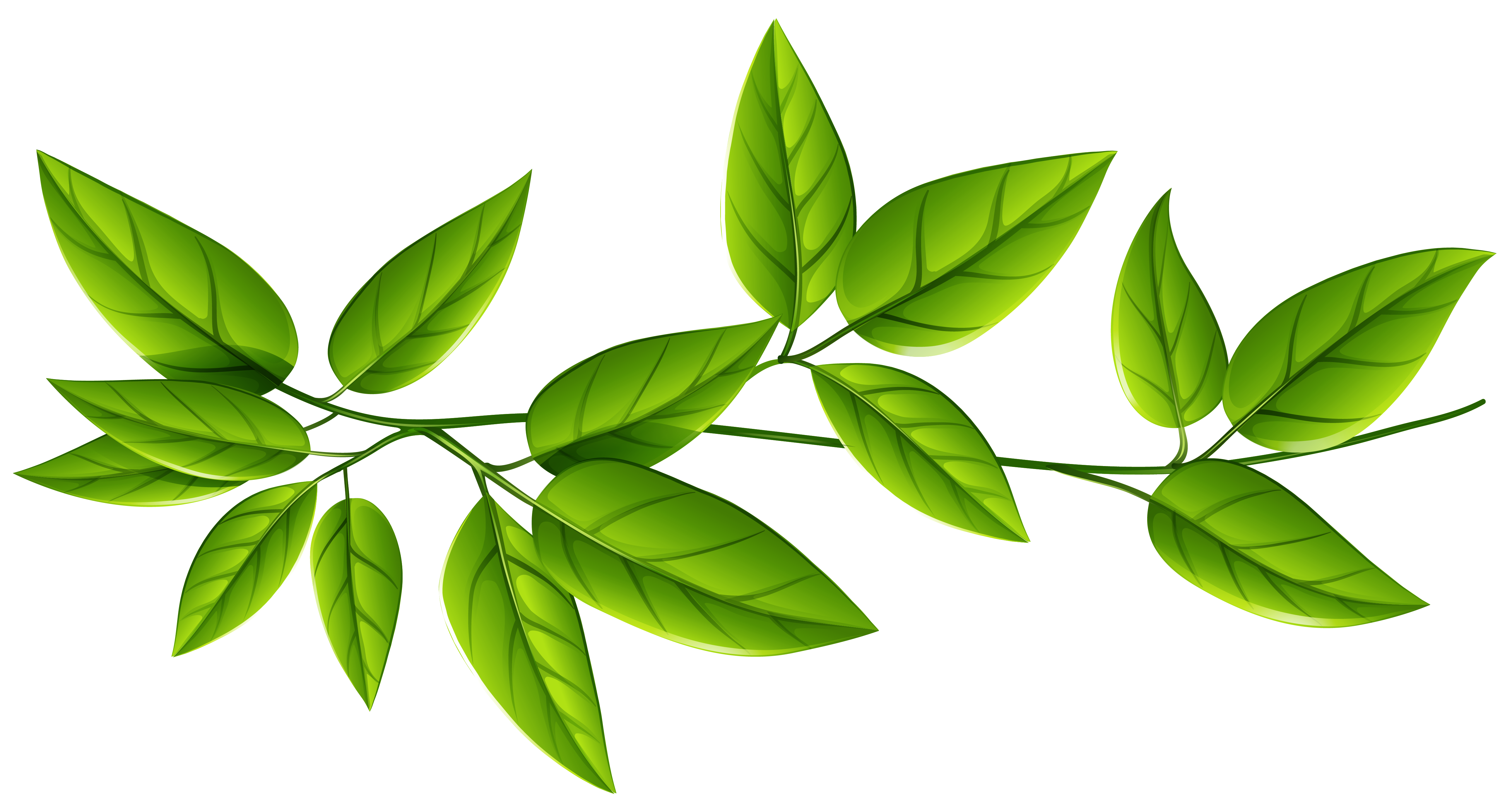 Green Leaves PNG Image | Gallery Yopriceville - High-Quality Images ...