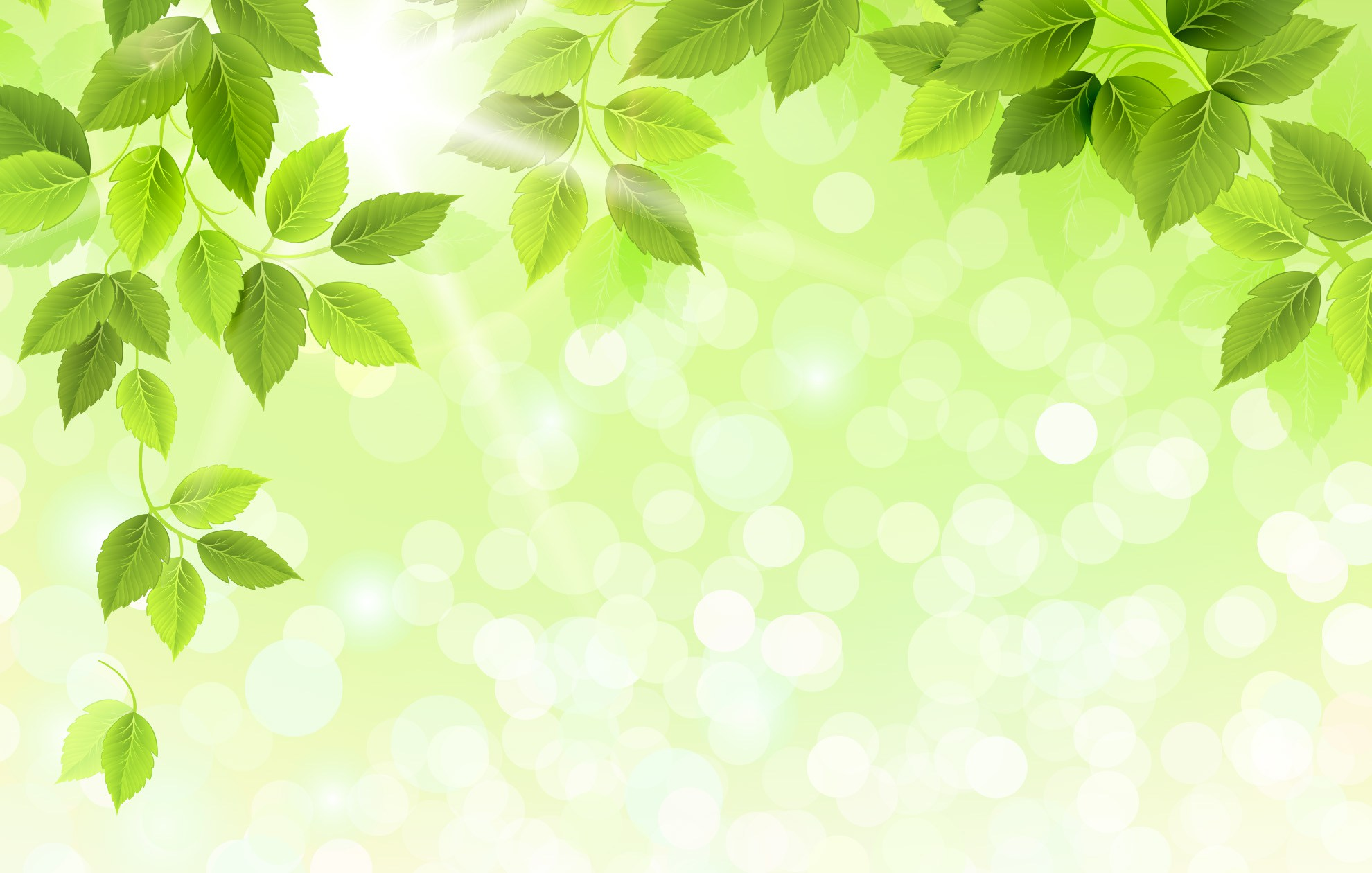 free photo green leaves background green  light  leaf free leaf vector backgrounds free leaf vector icon