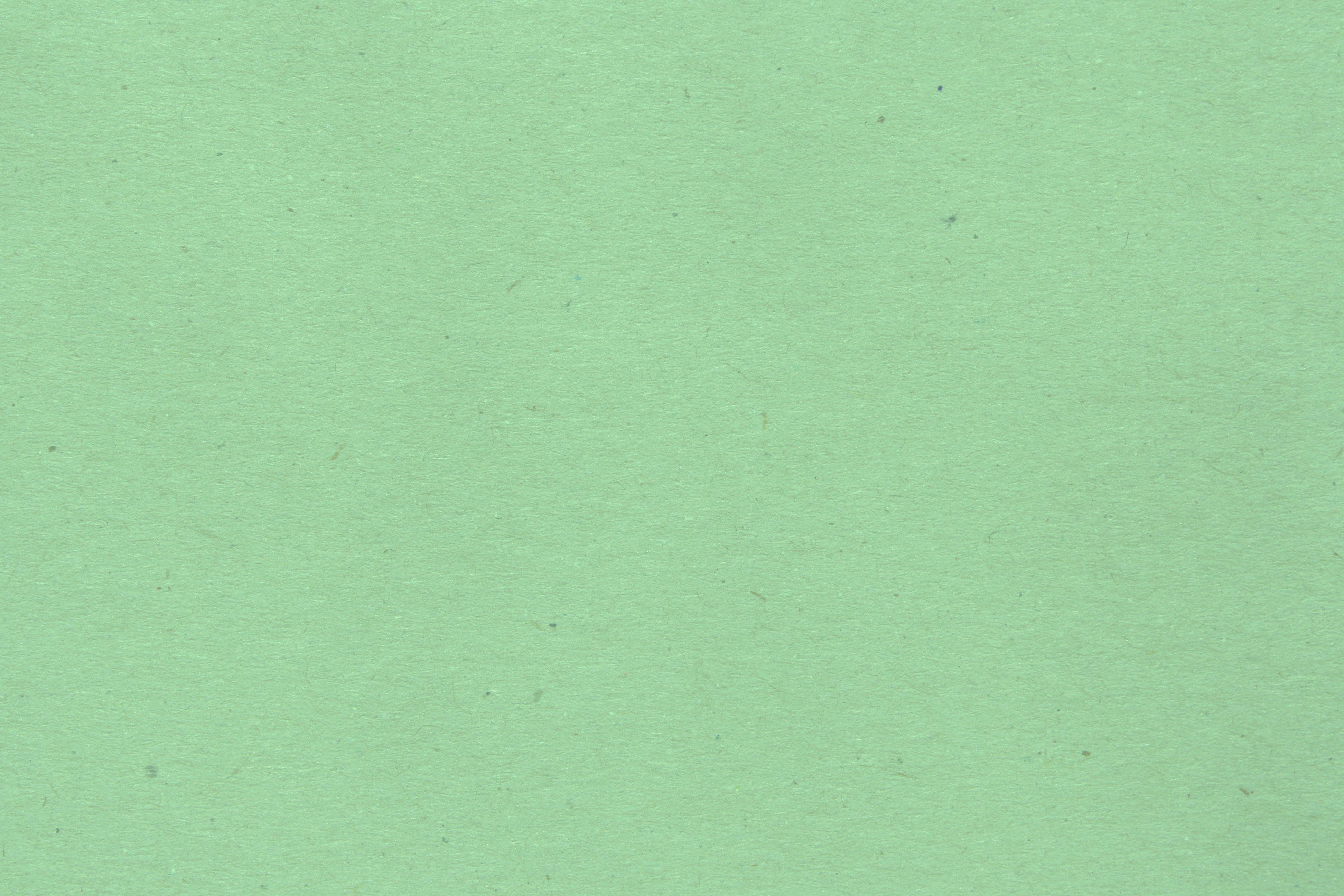 Mint Green Paper Texture Picture | Free Photograph | Photos Public ...