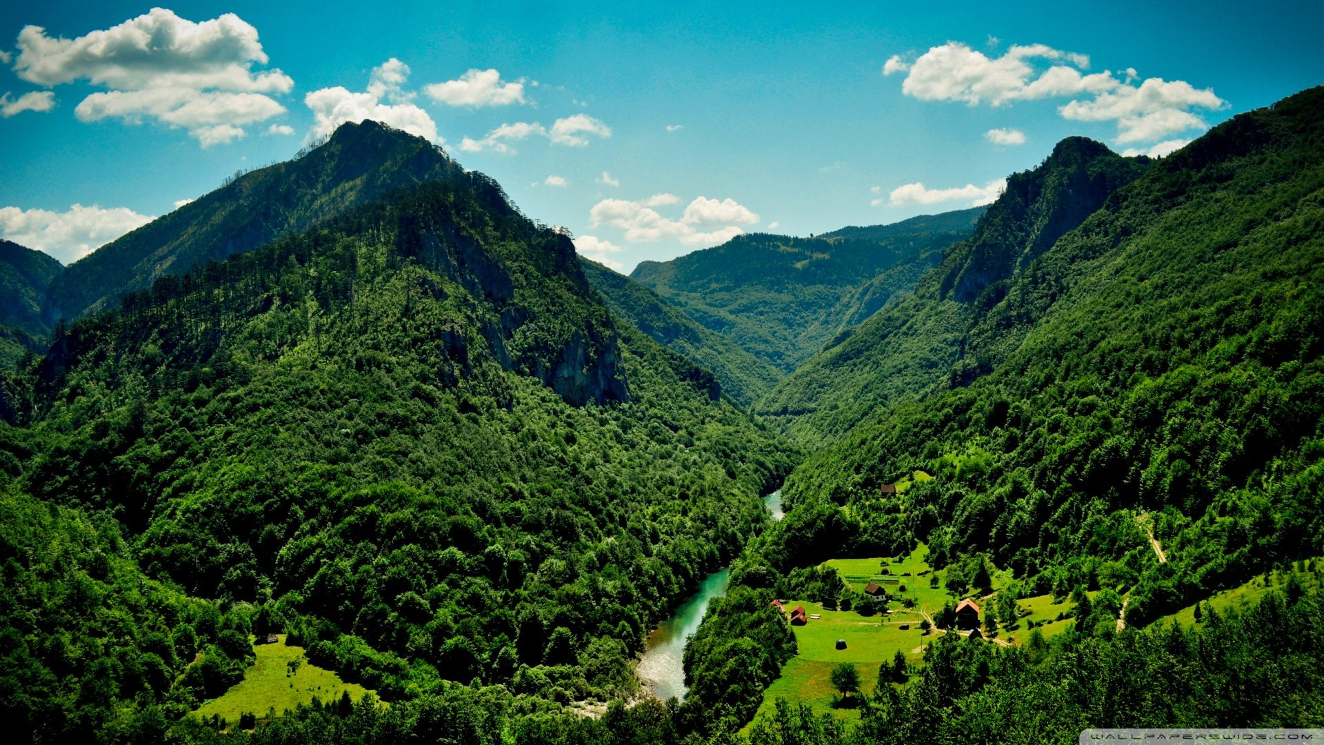 Green mountains and the river wallpapers and images - wallpapers ...