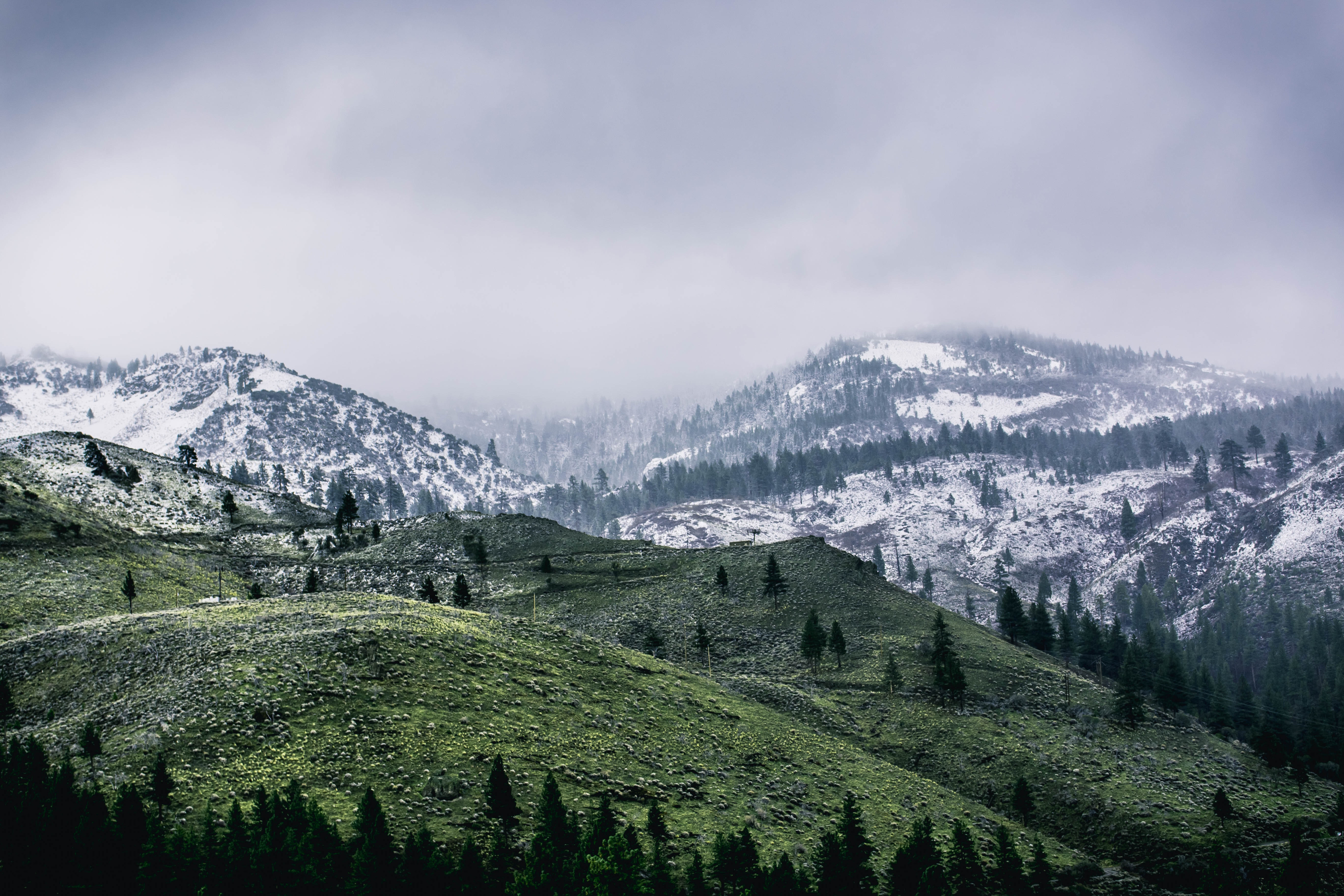 Green mountain covered by snow photo