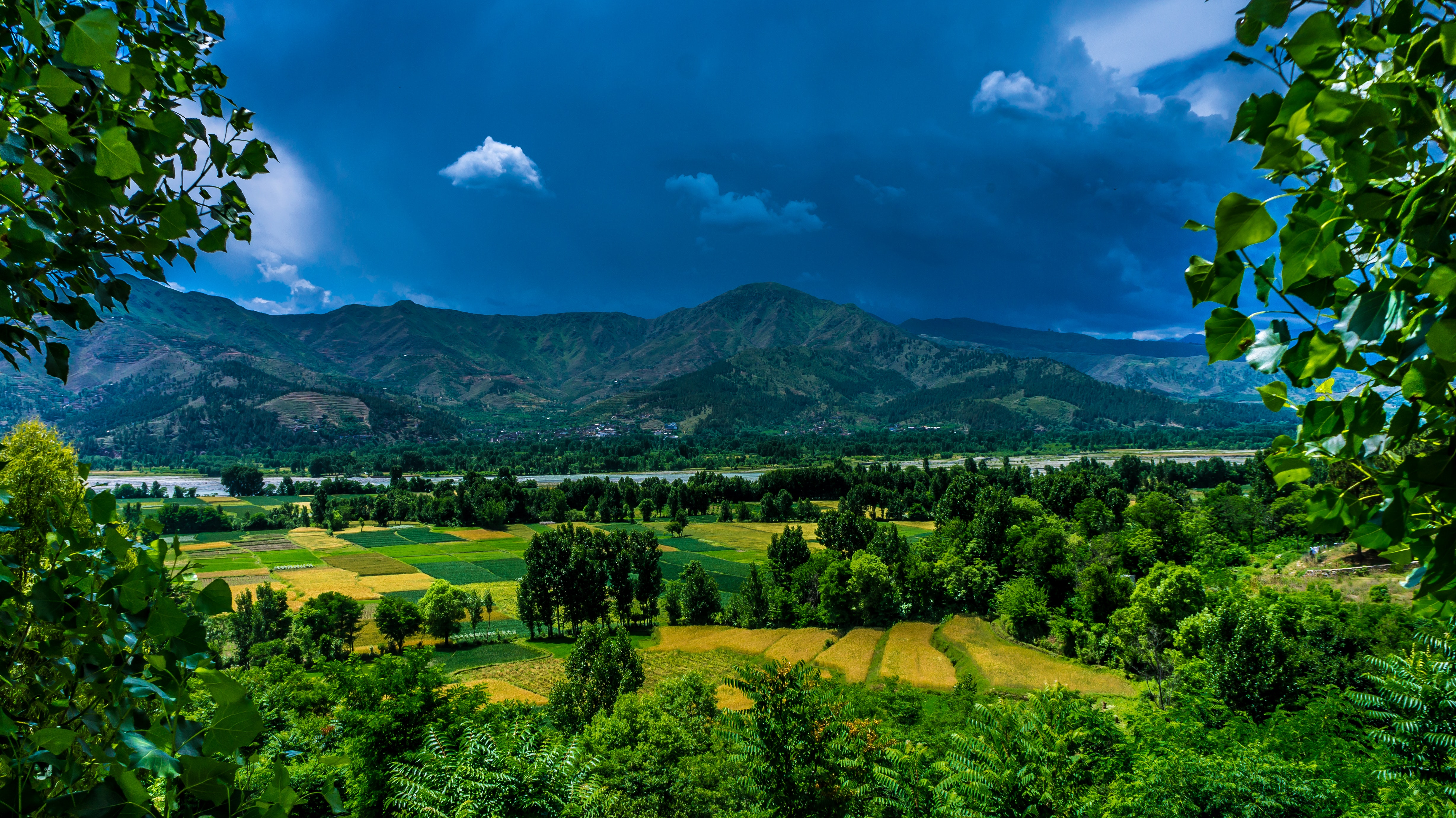 Green Mountain Distance With Trees, Outdoors, Valley, Trees, Travel, HQ Photo