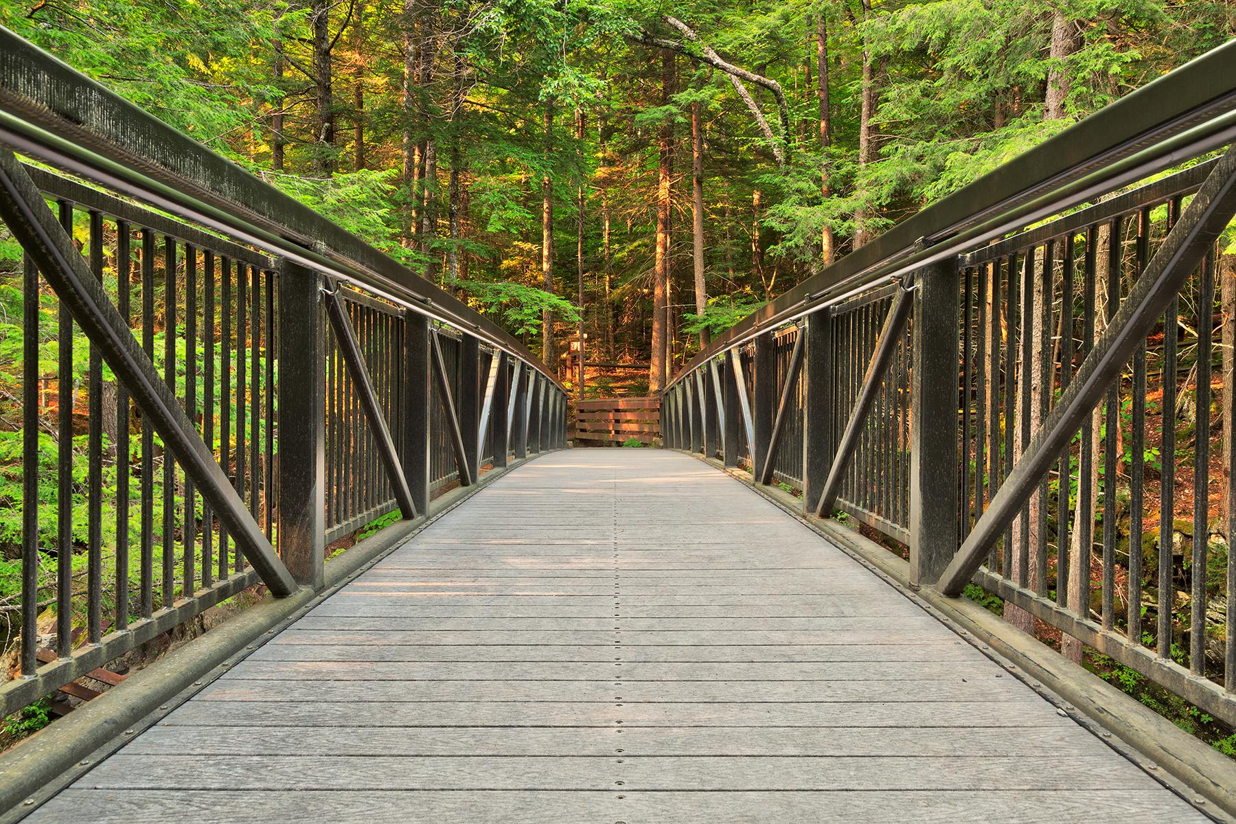 Green mountain forest bridge - hdr photo