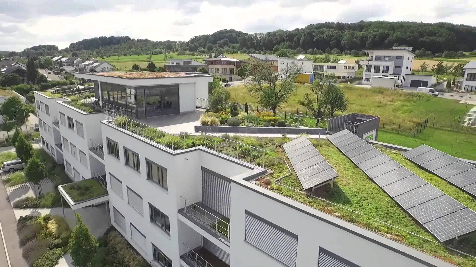 Green Roof Systems, this building shows the full range! - YouTube