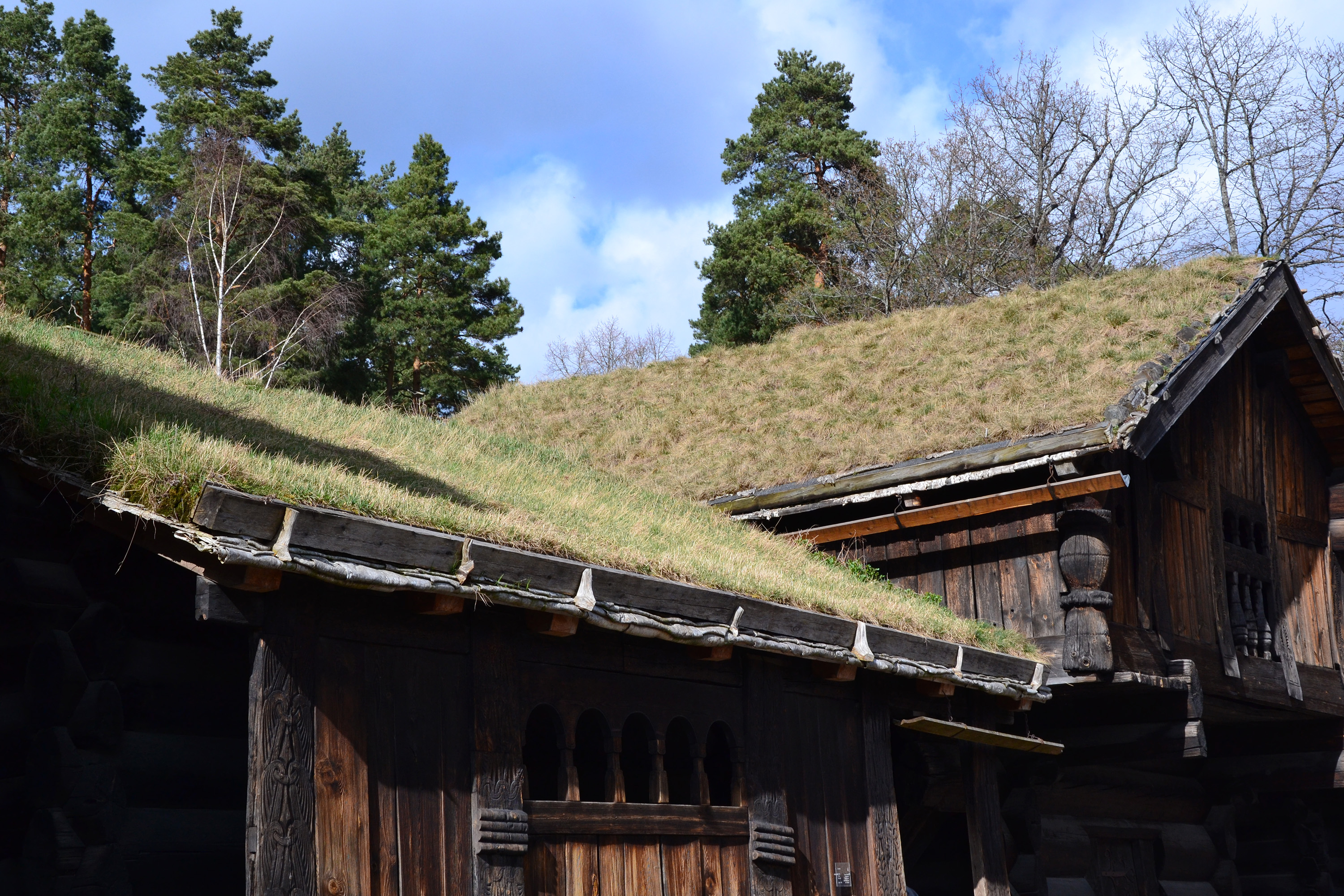 Green roof, Ancient, Medieval, Traditional, Tradition, HQ Photo