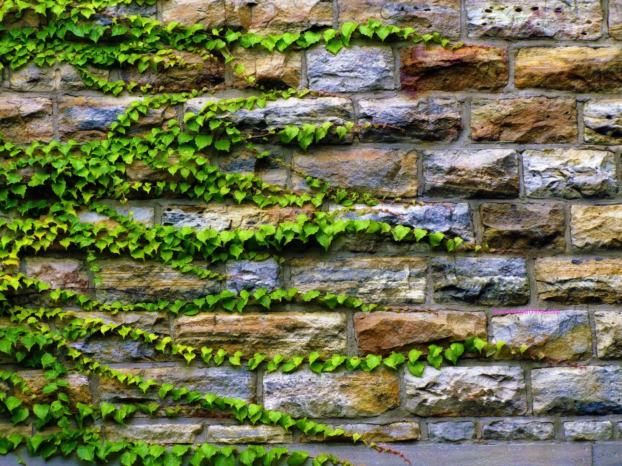 Green stone wall photo