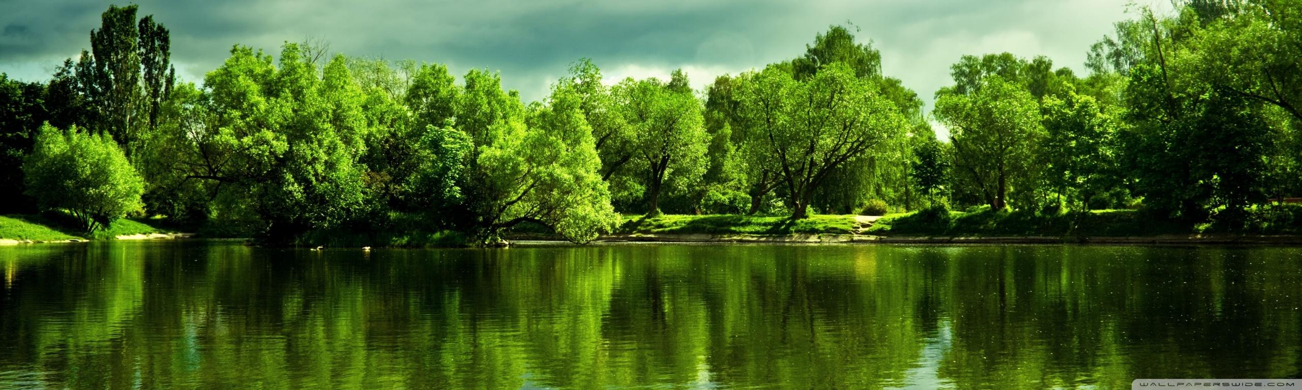 Green Trees ❤ 4K HD Desktop Wallpaper for 4K Ultra HD TV • Wide ...