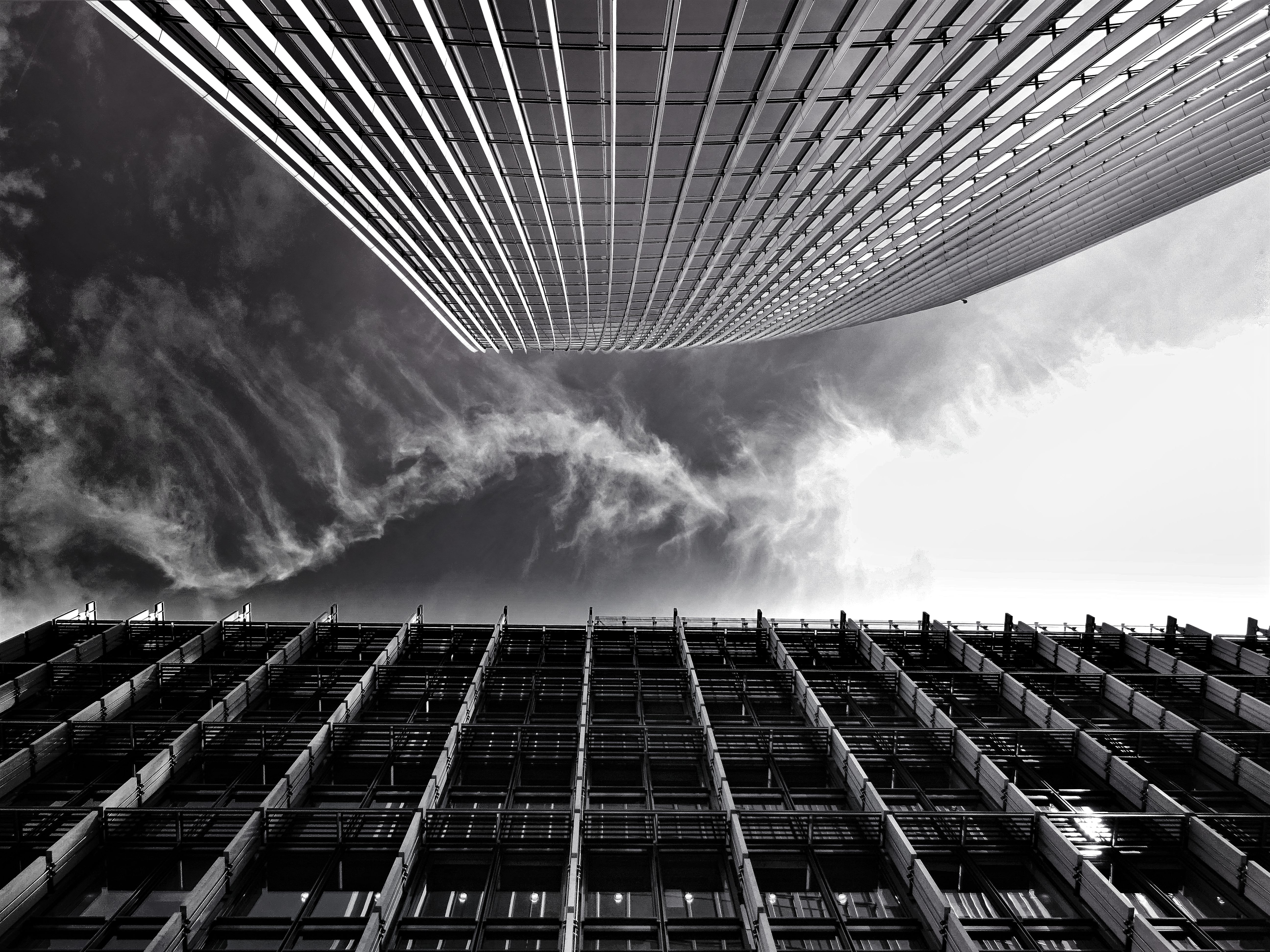 Grey Scale Photo of Buildings, Modern, Windows, Urban, Tall, HQ Photo