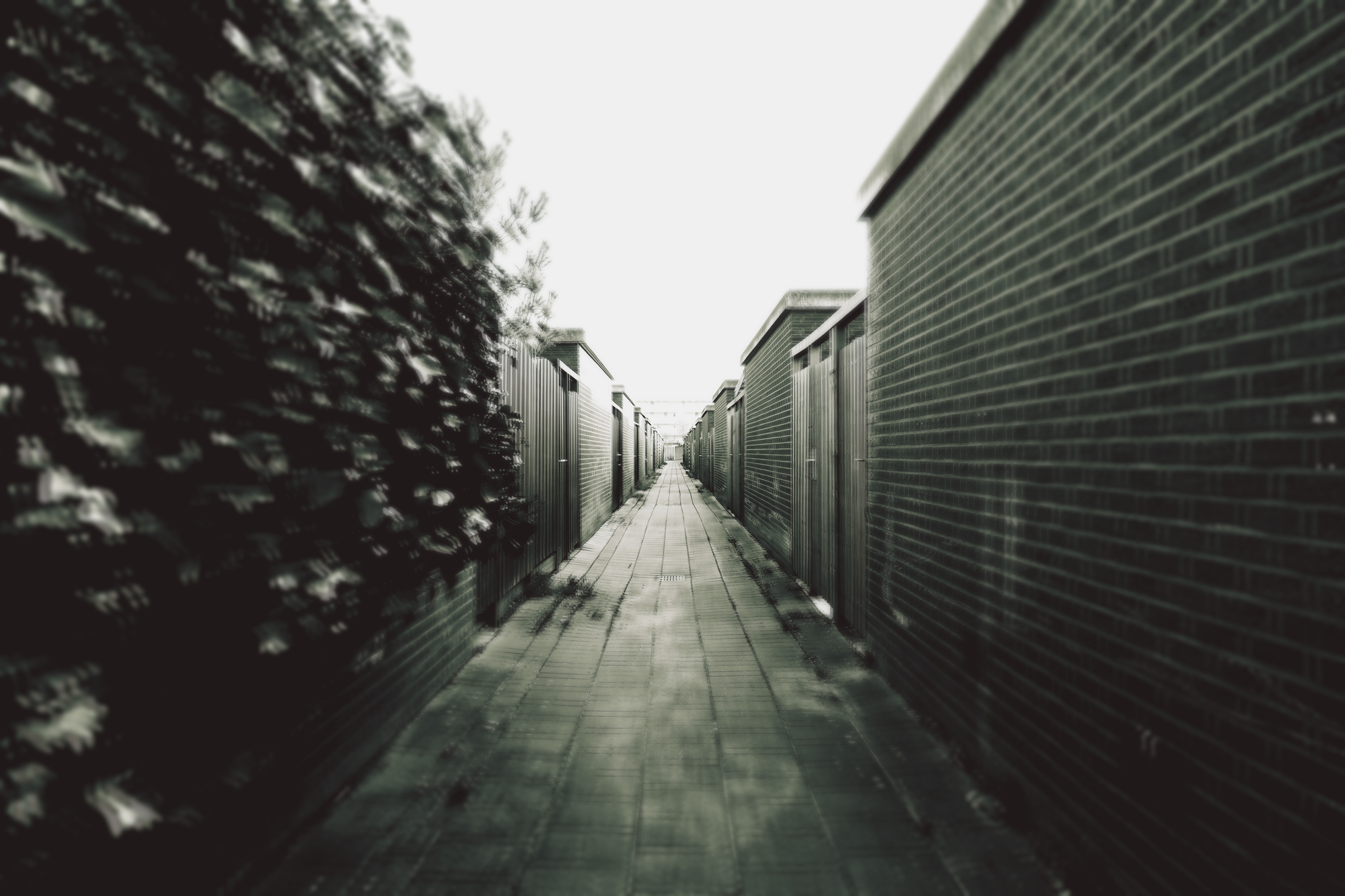 Grey Scale Photography of a Corridor, Alley, Black-and-white, Walls, HQ Photo
