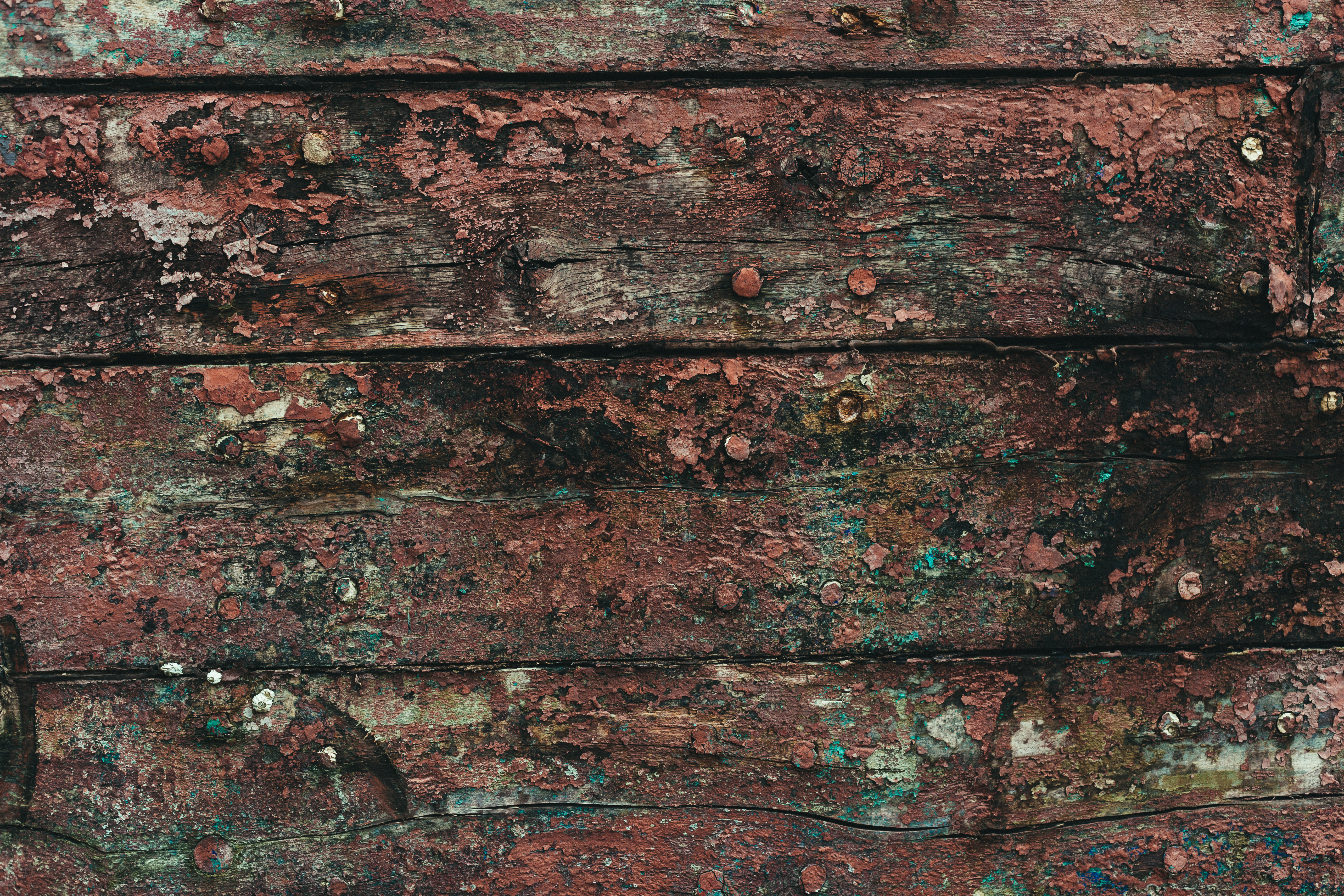 Gritty wood texture with peeled paint photo