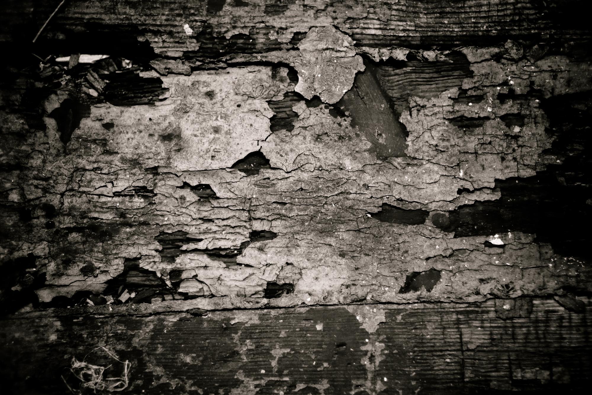 Grunge Cracked Paint, Cracked, Dark, Gloomy, Grunge, HQ Photo