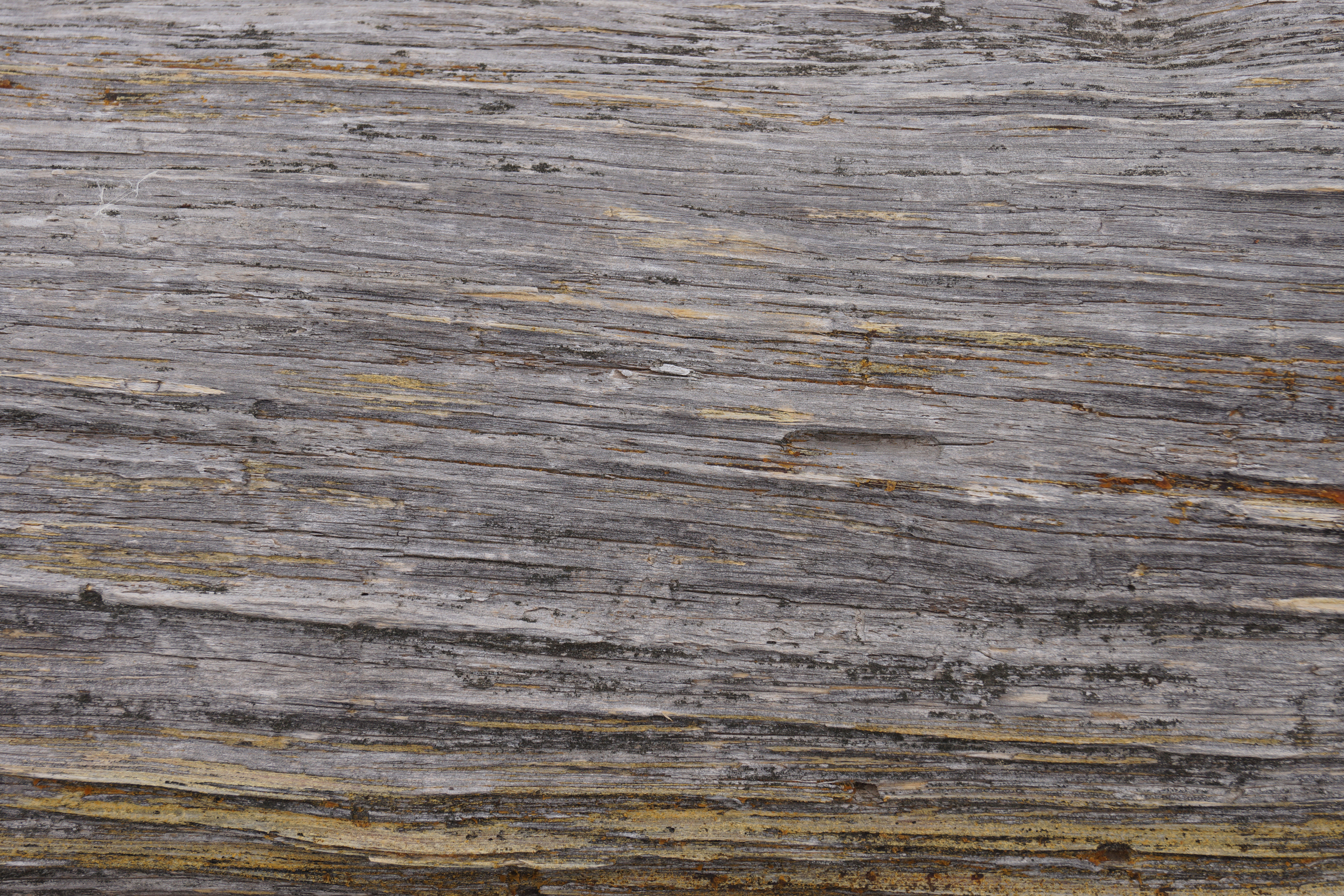 Free High Rez Grunge Texture Download: Grainy Wood Grain - Judah ...