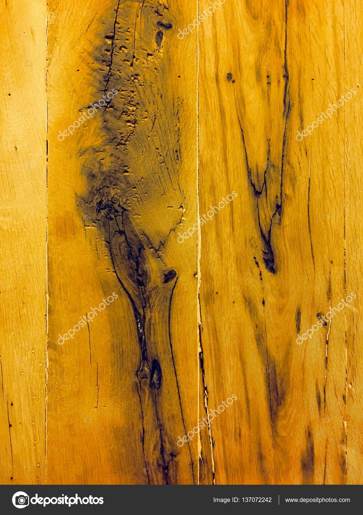 Fragment of bark wood texture. background old panels. Grunge retro ...