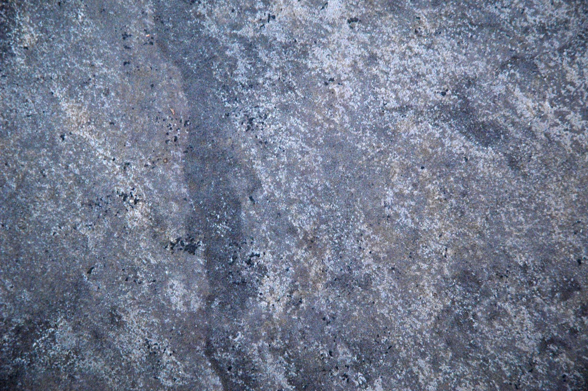 Free » DSC_4293 Textures from TextureKing