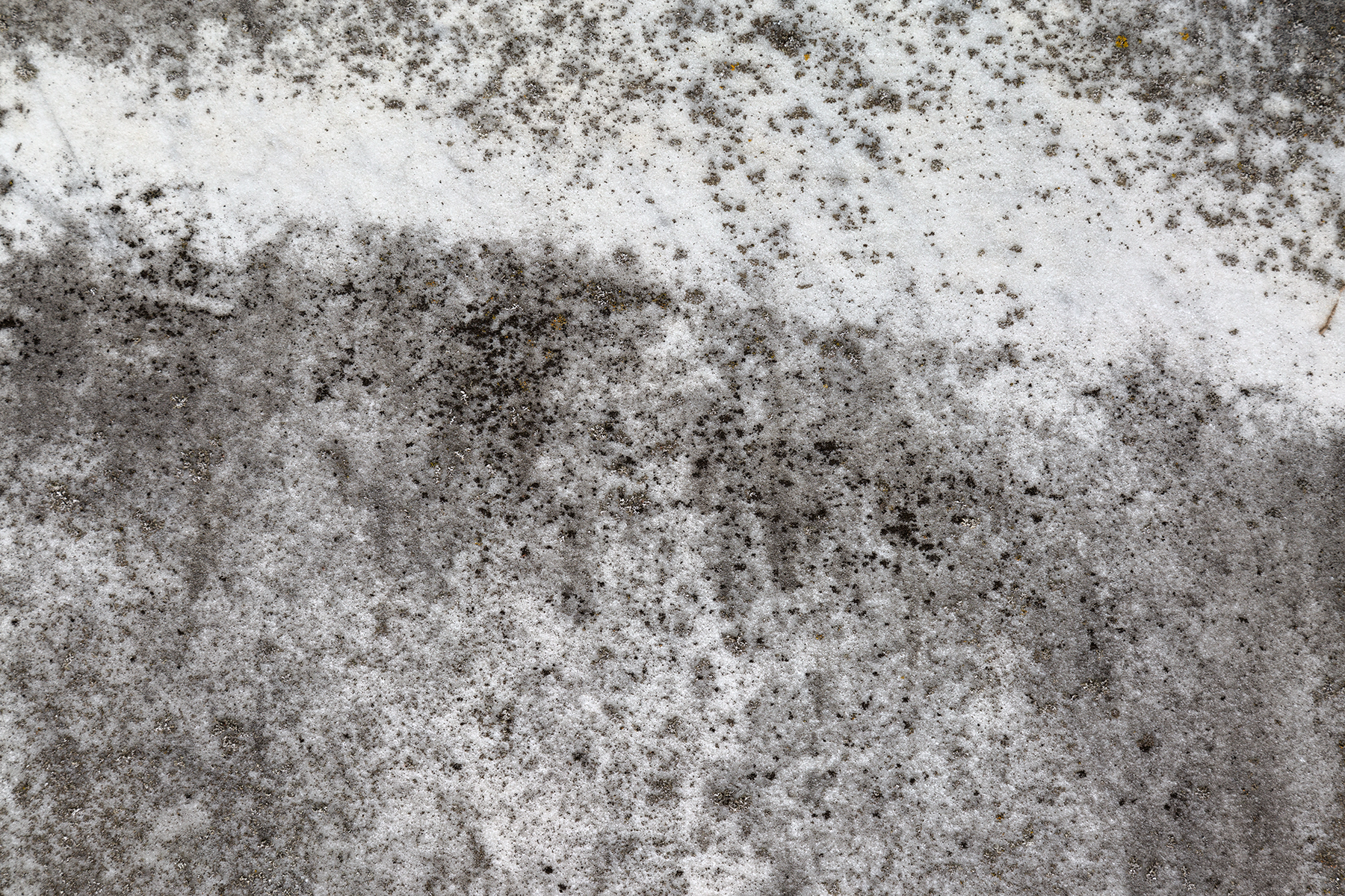 Grunge Stone Texture - HDR, Age, Mold, Raw, Range, HQ Photo