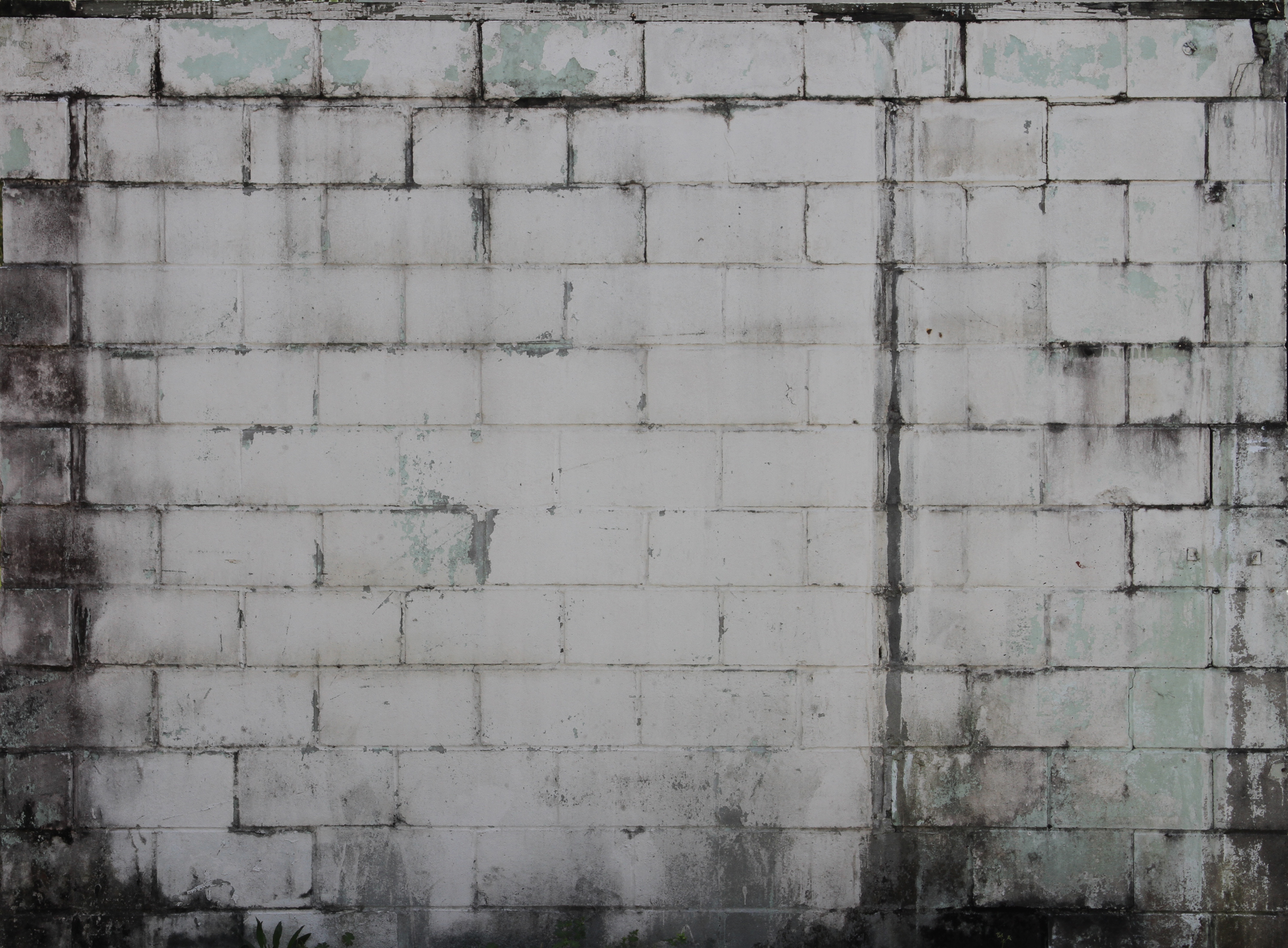 Grungy White Wall Texture - 14Textures