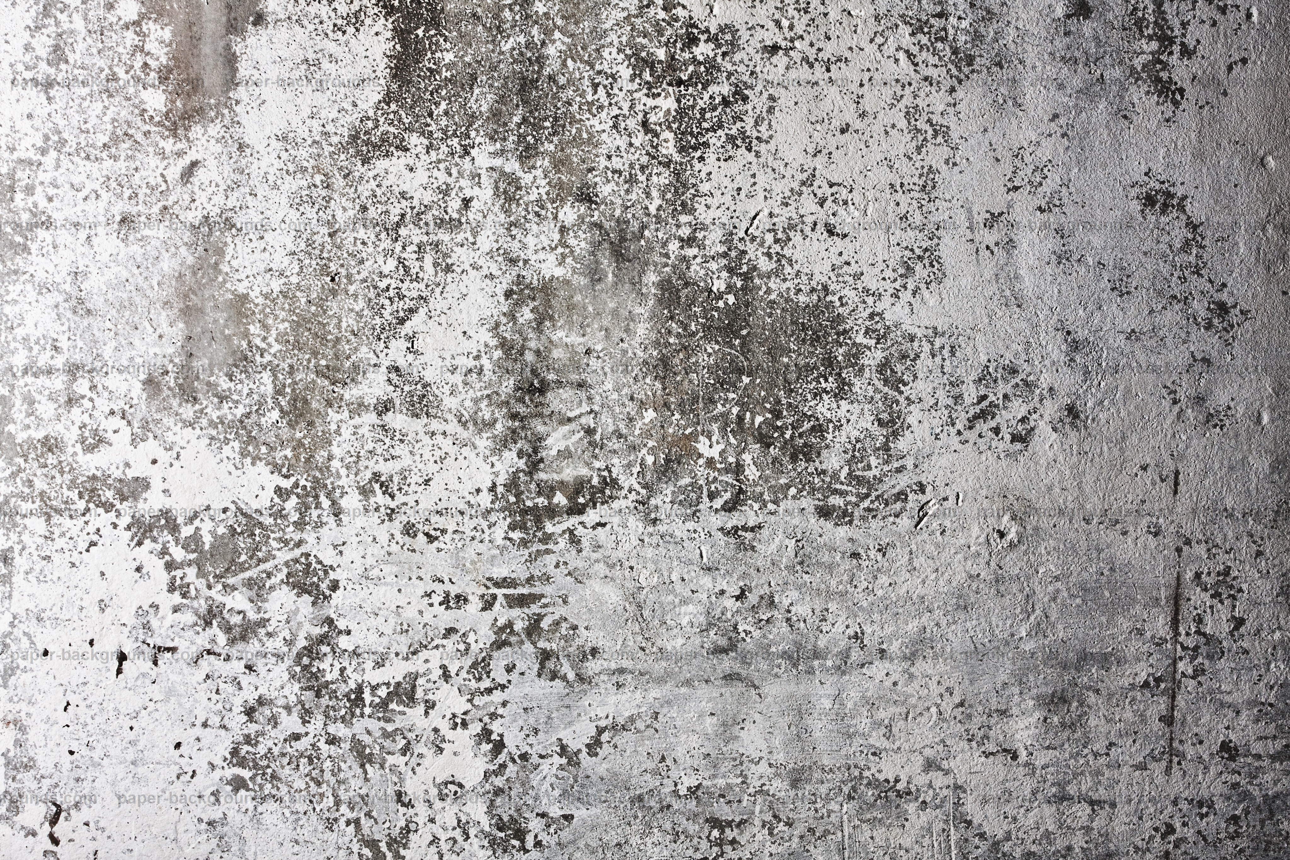 Paper Backgrounds | White Grunge Wall Background