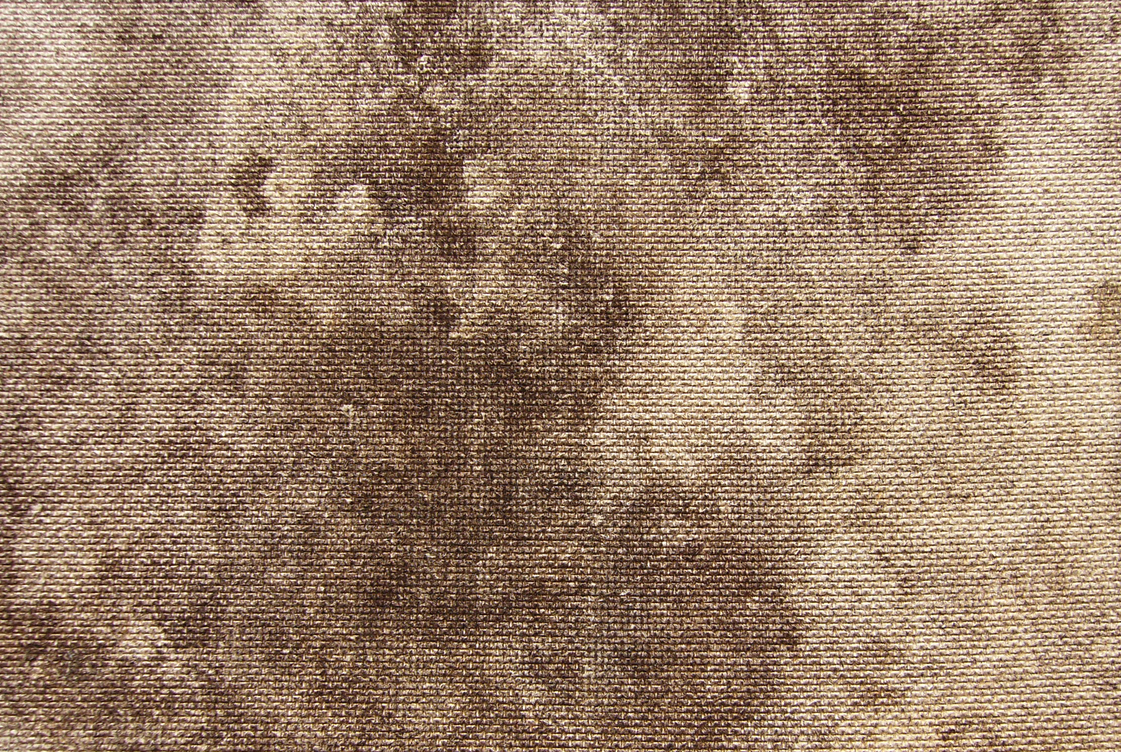 Grunge / Wood texture (venner, brown, fiber)