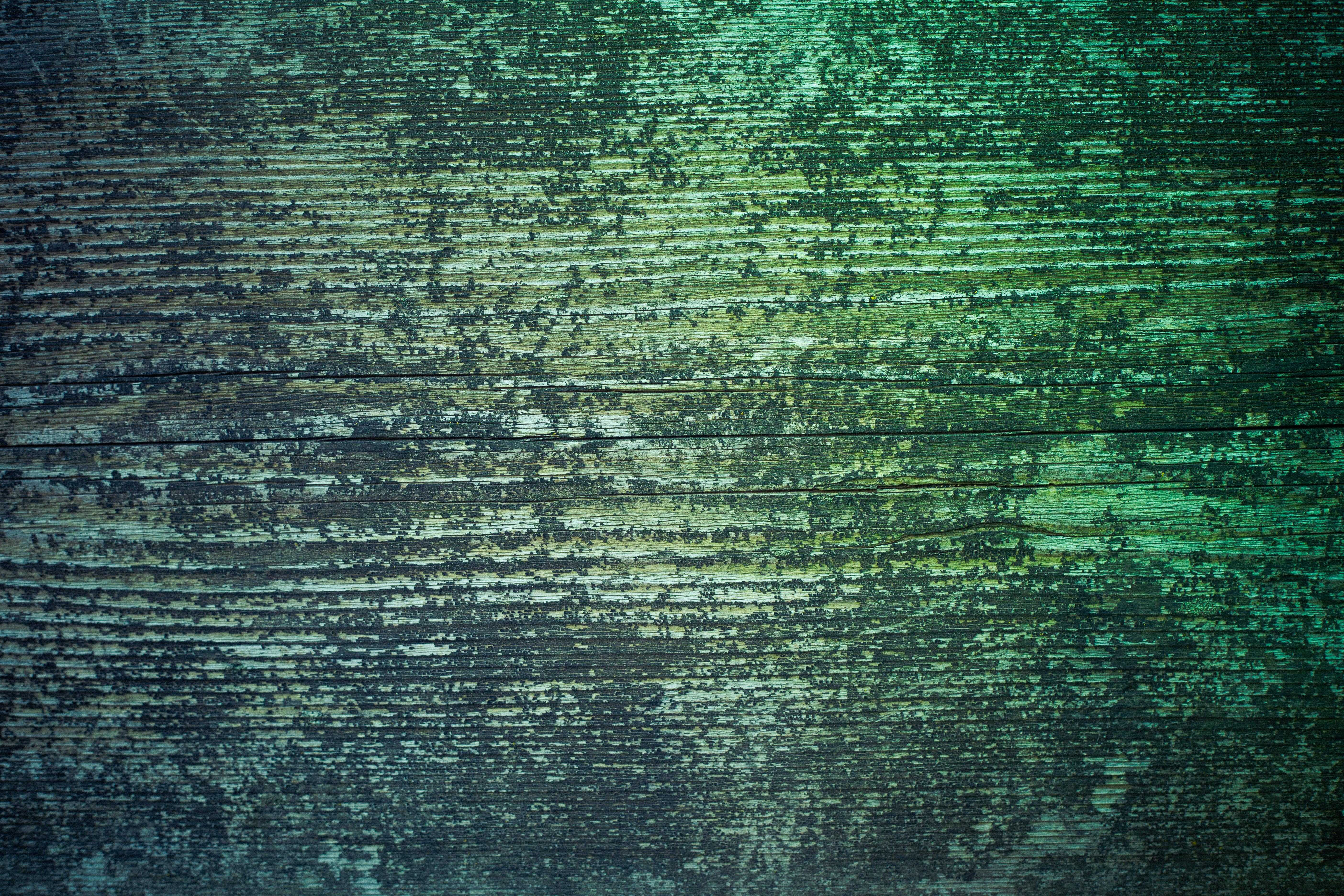 Free Blue Green Grunge Wood Texture | indiedesigner.com - FREE ...