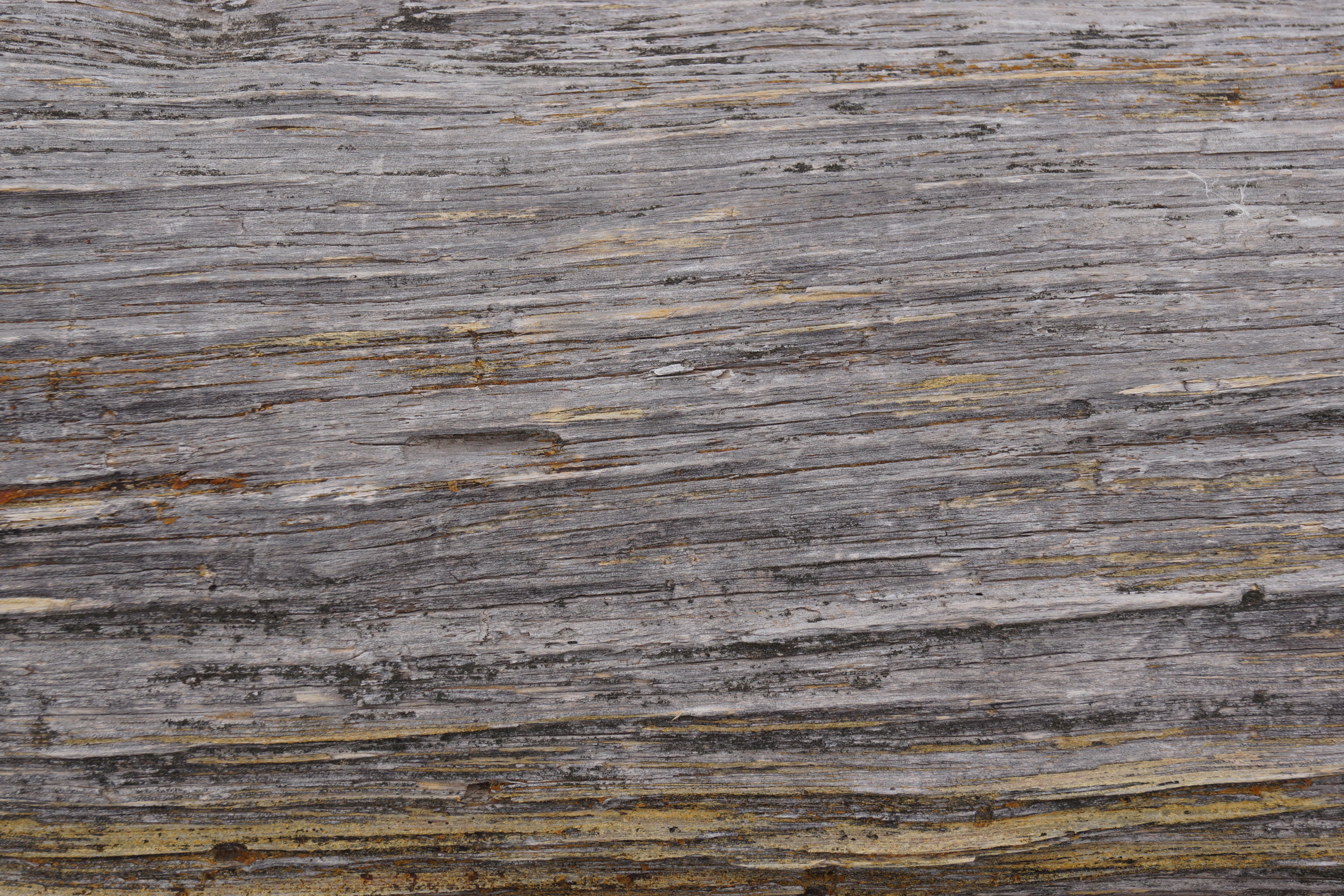 Free High Rez Grunge Texture Download Grainy Wood Grain | CreateMePink