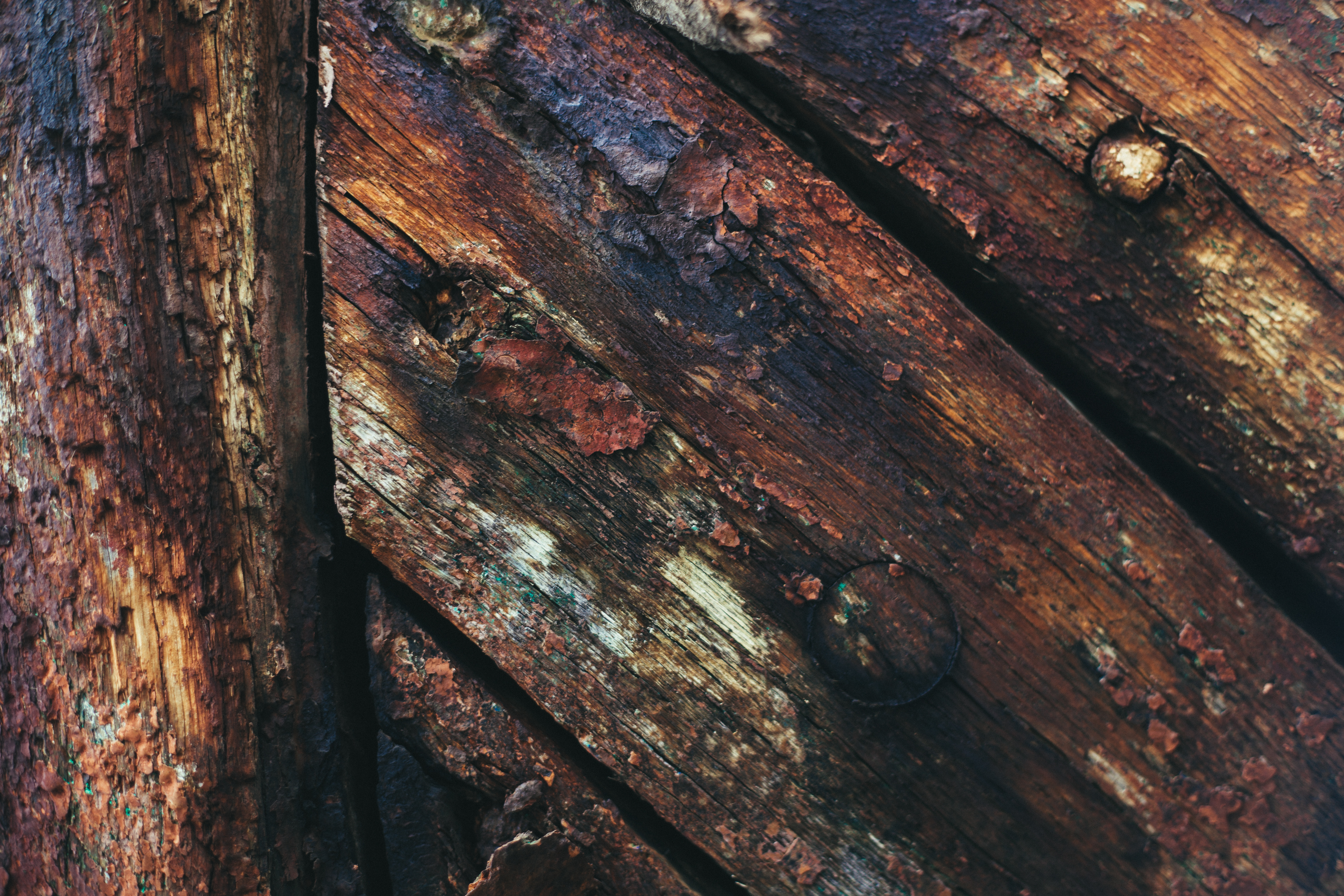Grungy Wood Background, Dark, Gloomy, Grunge, Grungy, HQ Photo