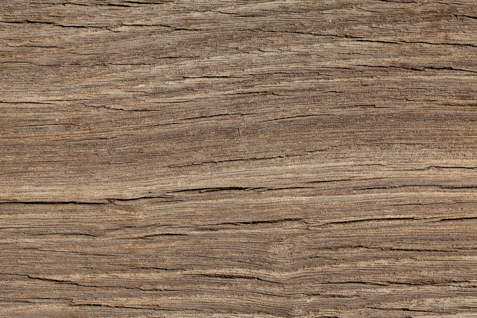 free photo wooden texture wooden wood texture free download