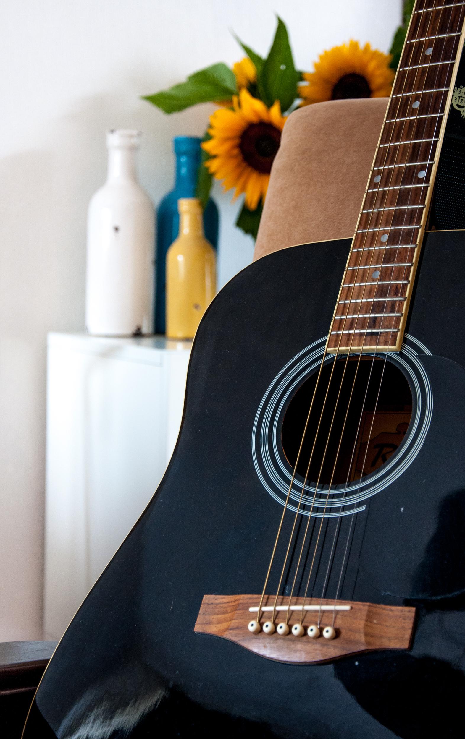 Guitar, Nylon, Tube, System, String, HQ Photo
