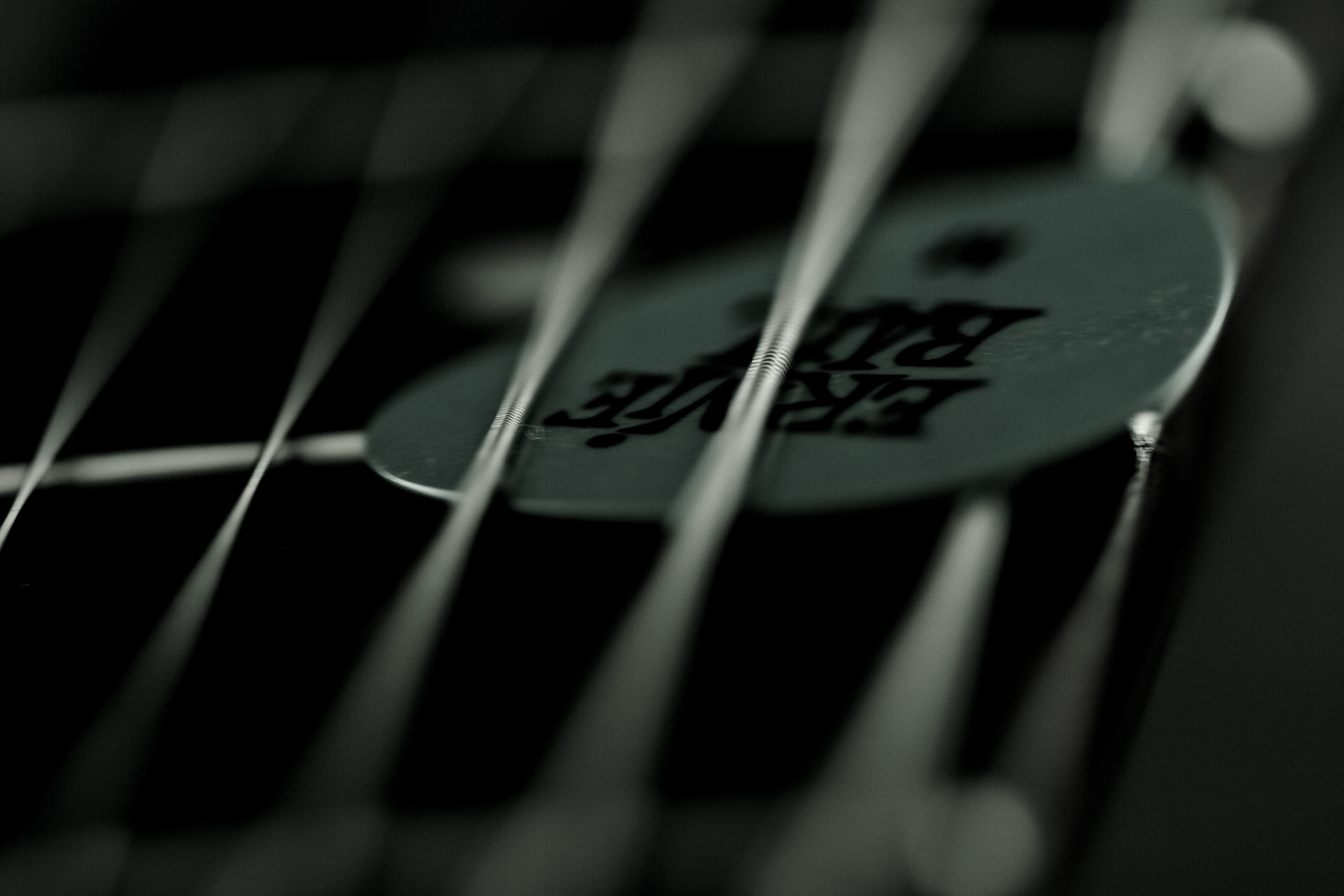 Guitar pick and strings photo