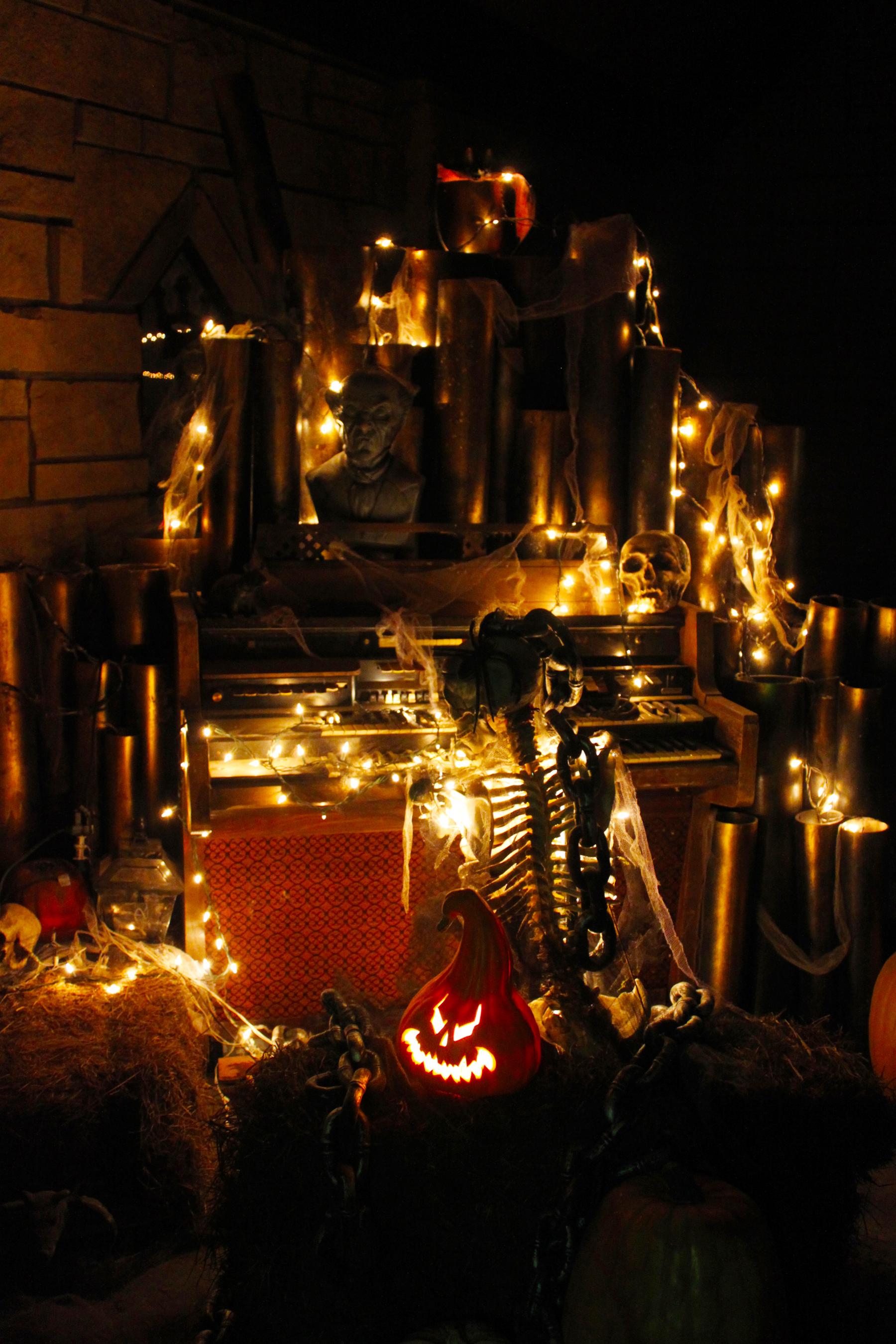 Halloween celebration photo