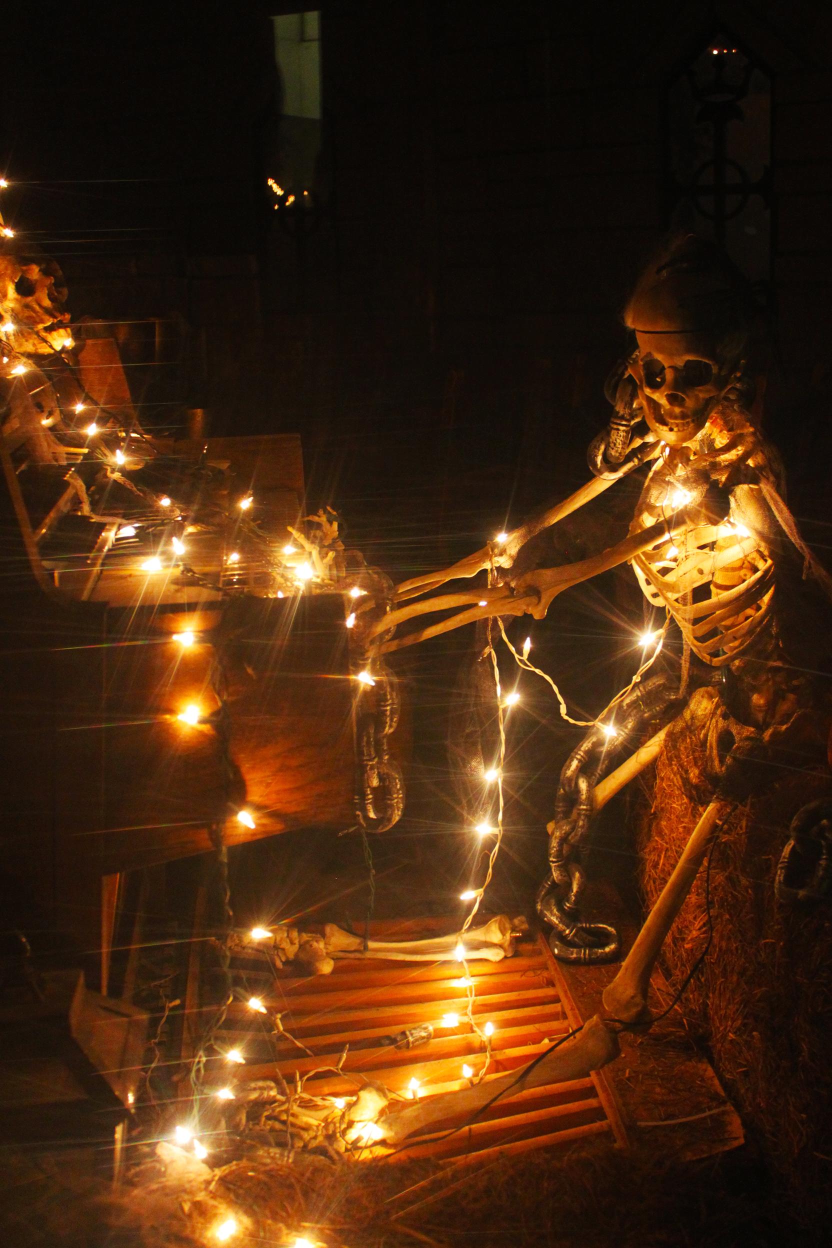 Halloween Decoration, Celebrate, Celebration, Decoration, Decorative, HQ Photo