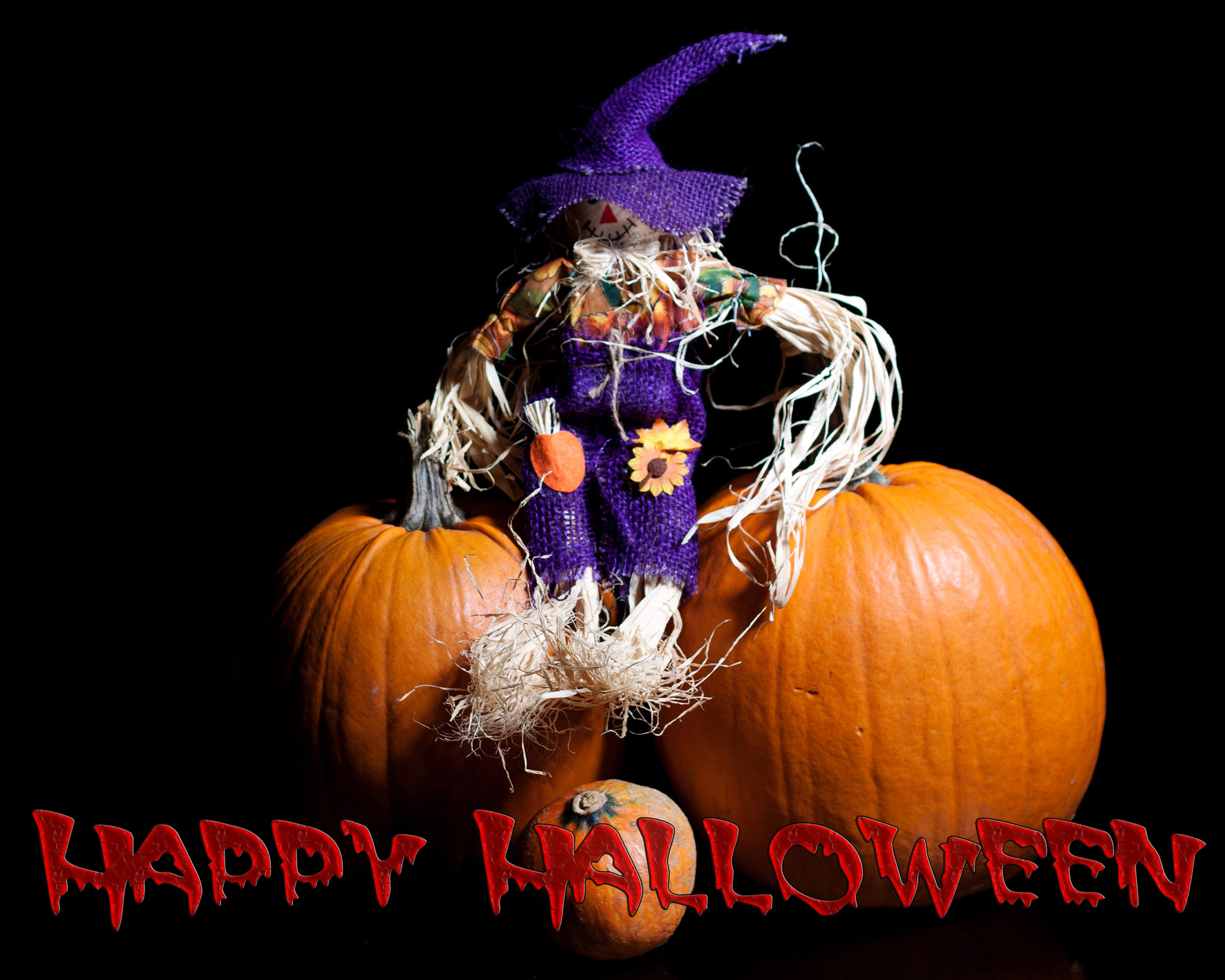 Halloween with Text, Autumn, Scarecrow, Lantern, Light, HQ Photo