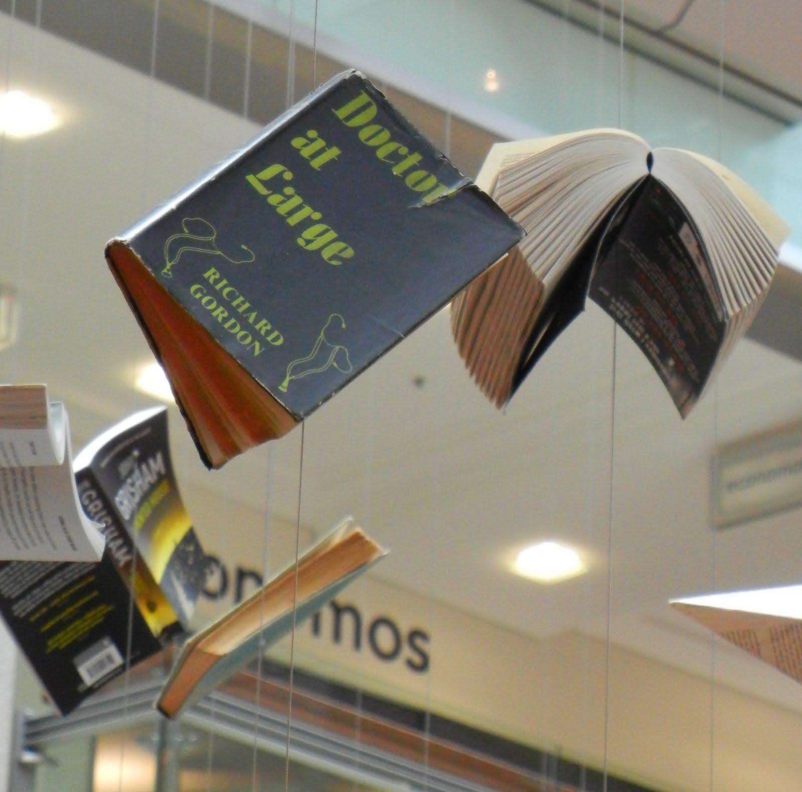 Sydney - Australia: Doctor at Large Flying Book