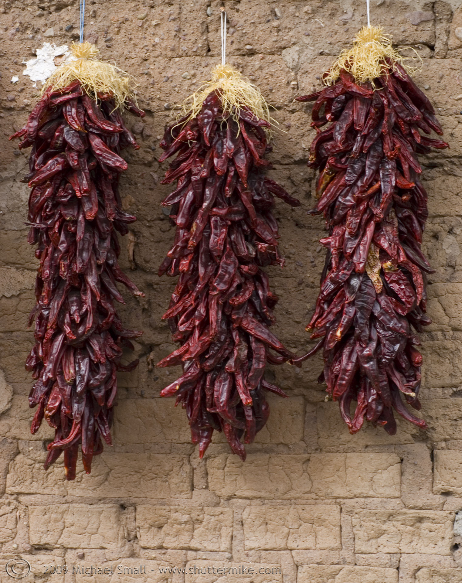 Leave some dried chilli out to keep lizards away http://www ...