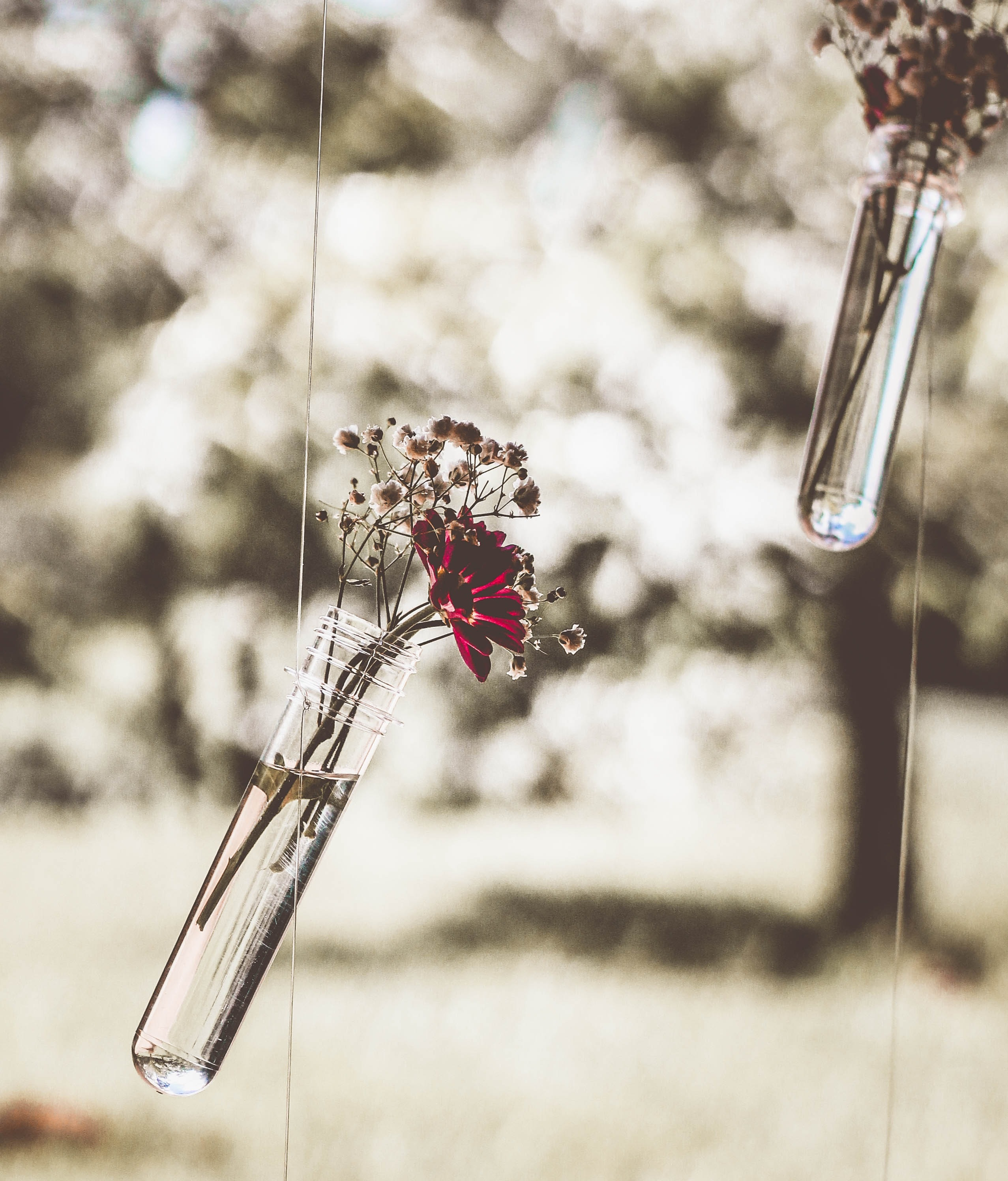 Hanging flower vase photo