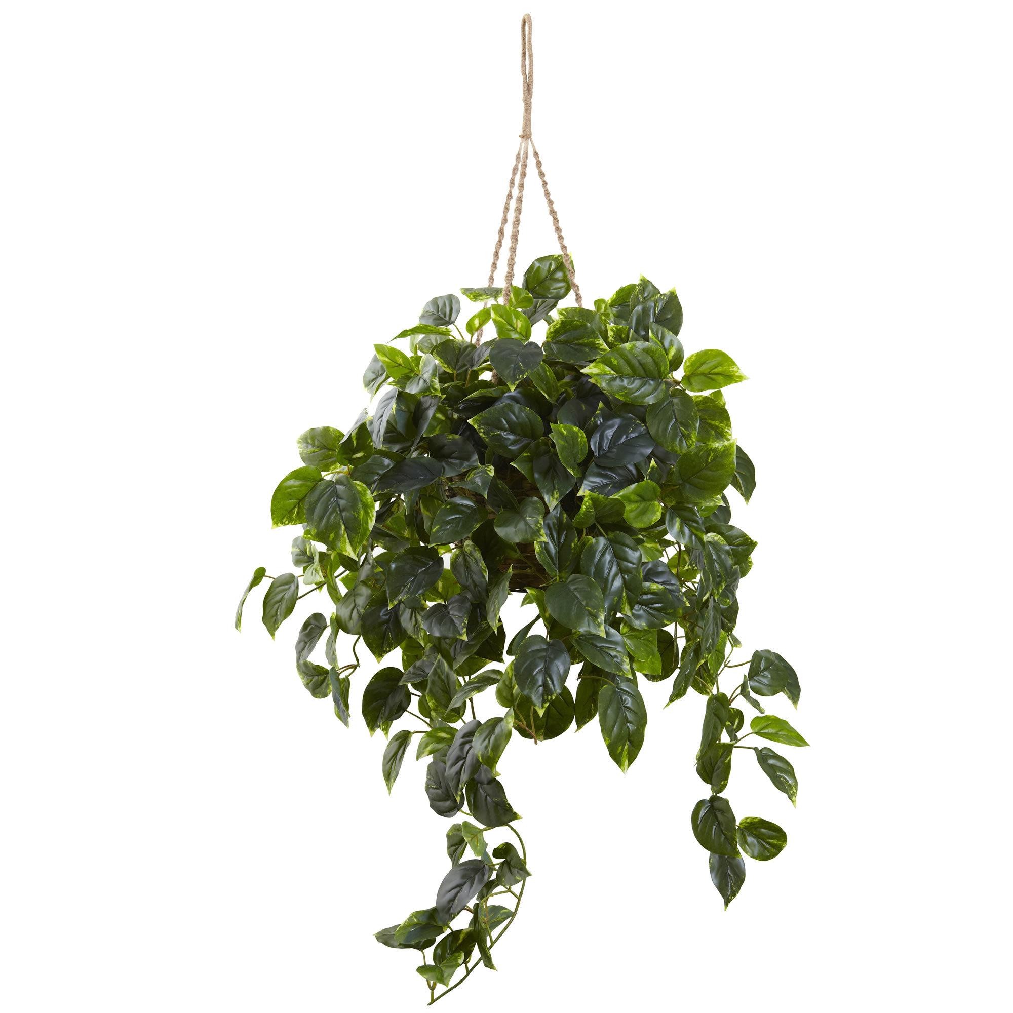 Nearly Natural Hanging Ivy Plant in Basket & Reviews | Wayfair