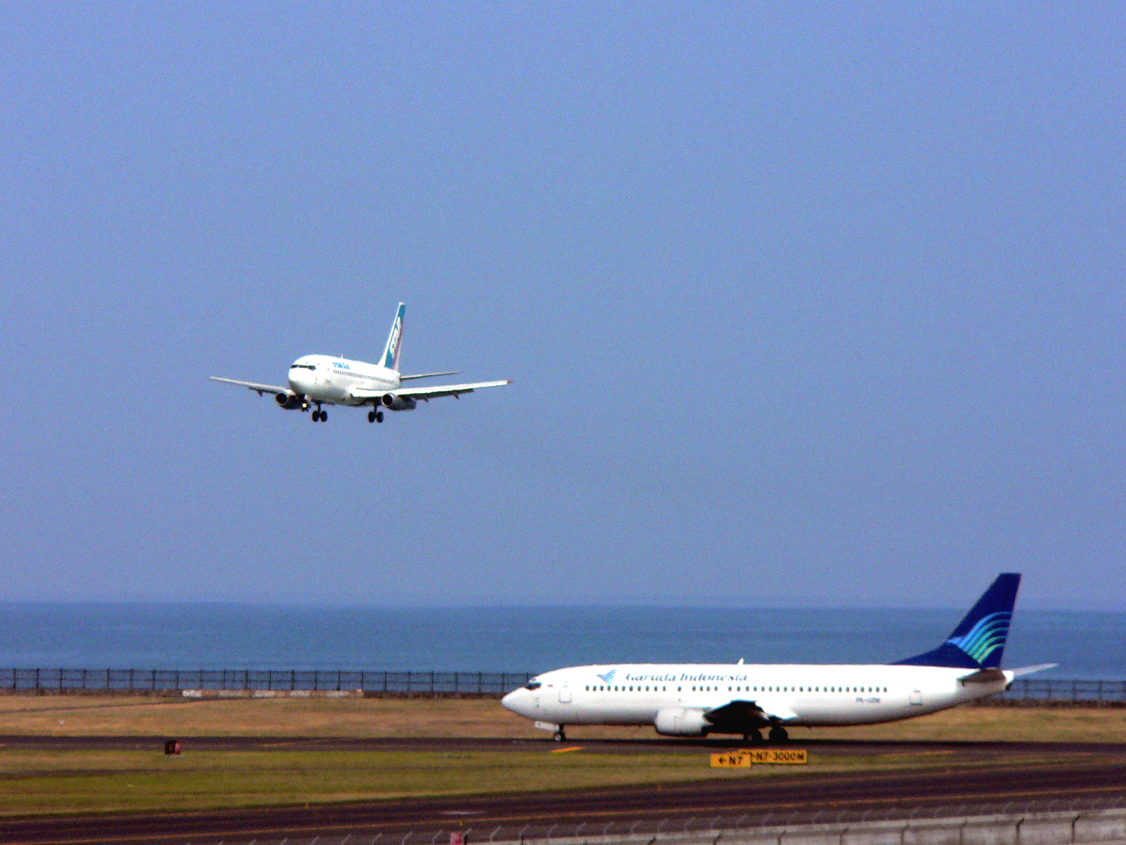 Happy landing, happy take off photo