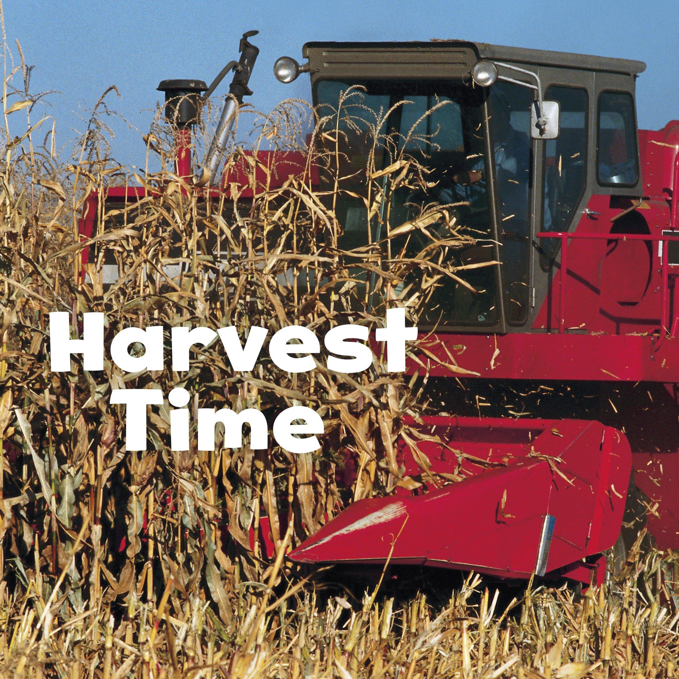 Harvest Time (Celebrate Fall): Erika L. Shores: 9781491460146 ...