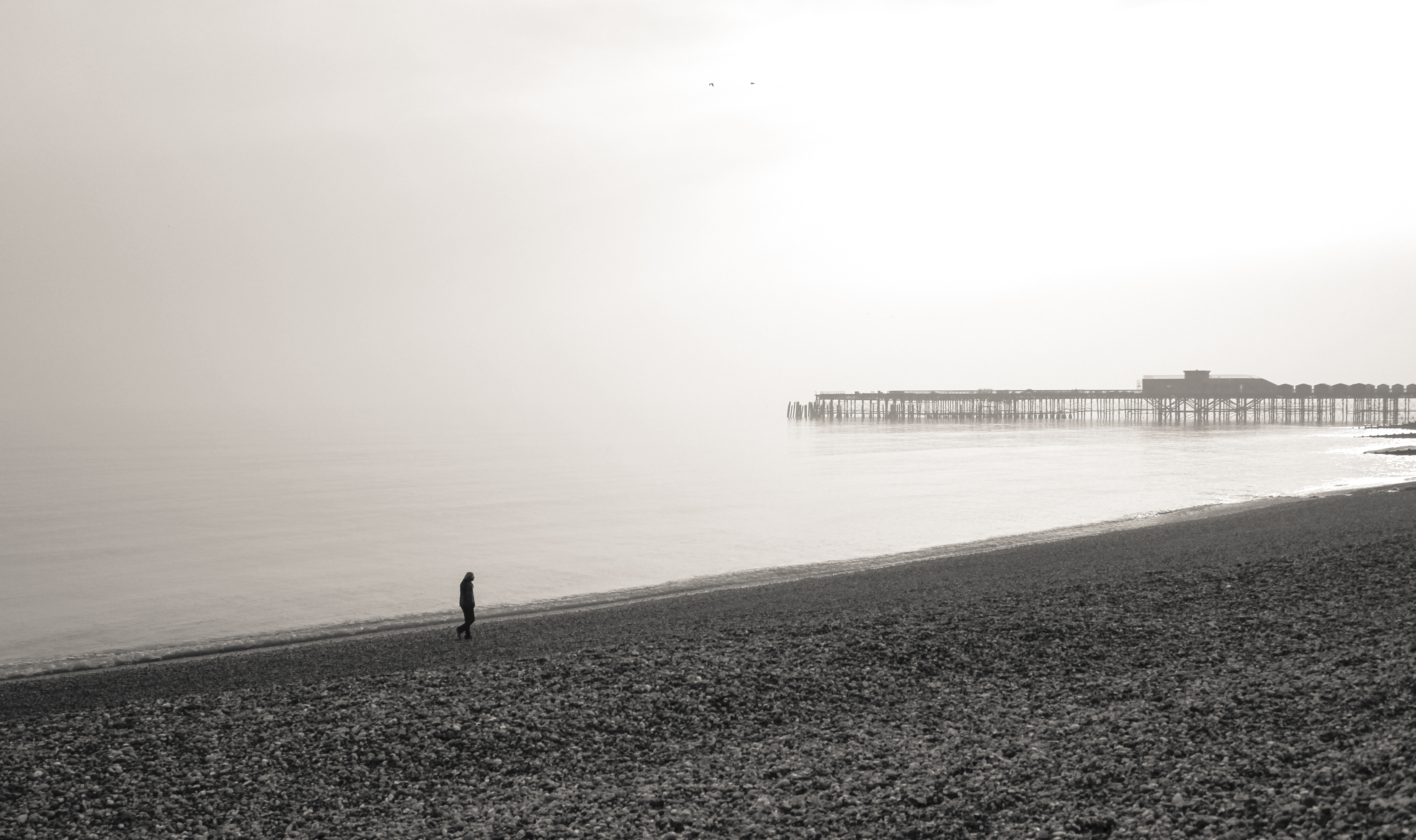 Hastings Pier UK, Beach, Black, Coast, Landscape, HQ Photo