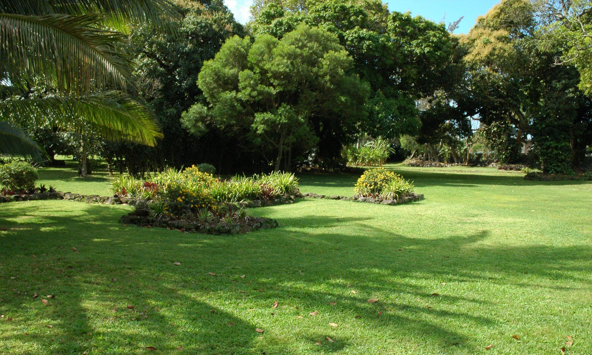 Free photo: Hawaiian Garden - Garden, Grass, Hawaii - Free ...